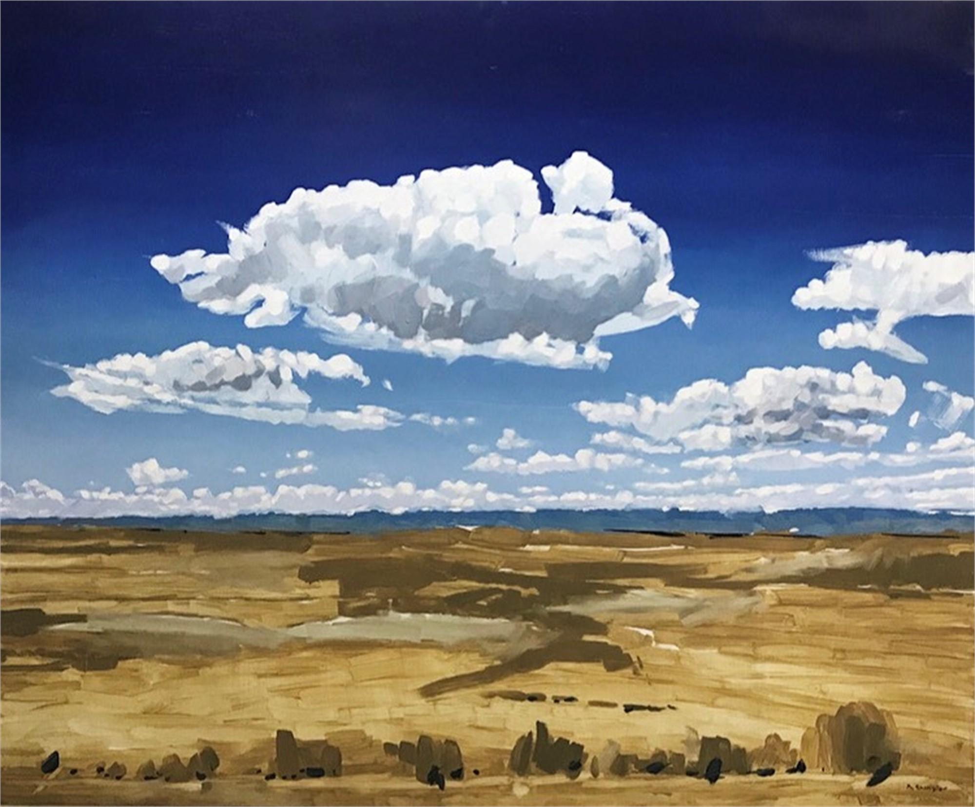 Wyoming Clouds by David Shingler