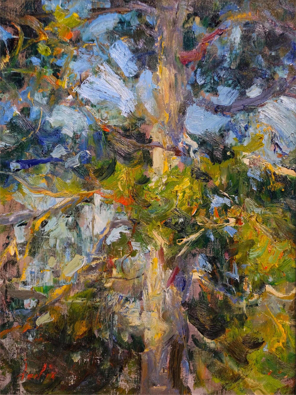 Cedar by Derek Penix