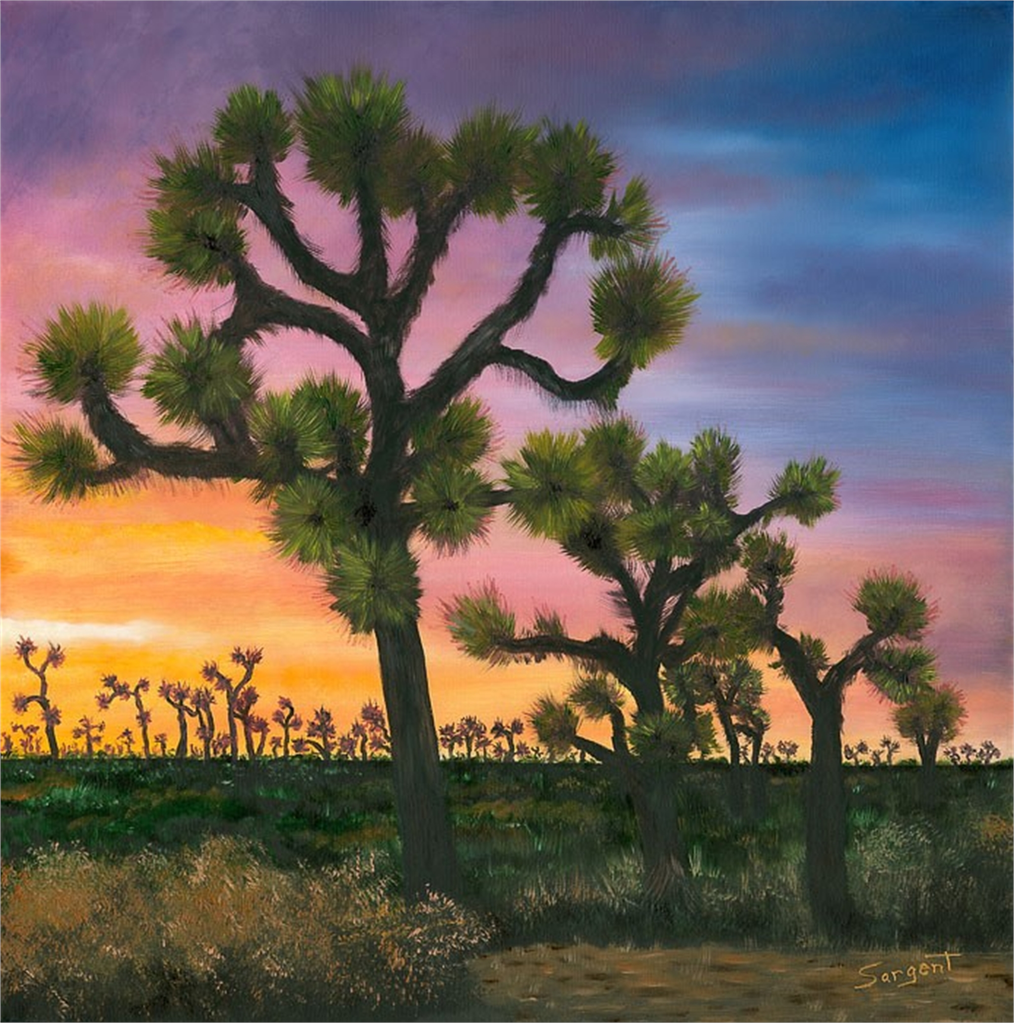 The Joshua Tree by Phil Sargent (Canby, OR)