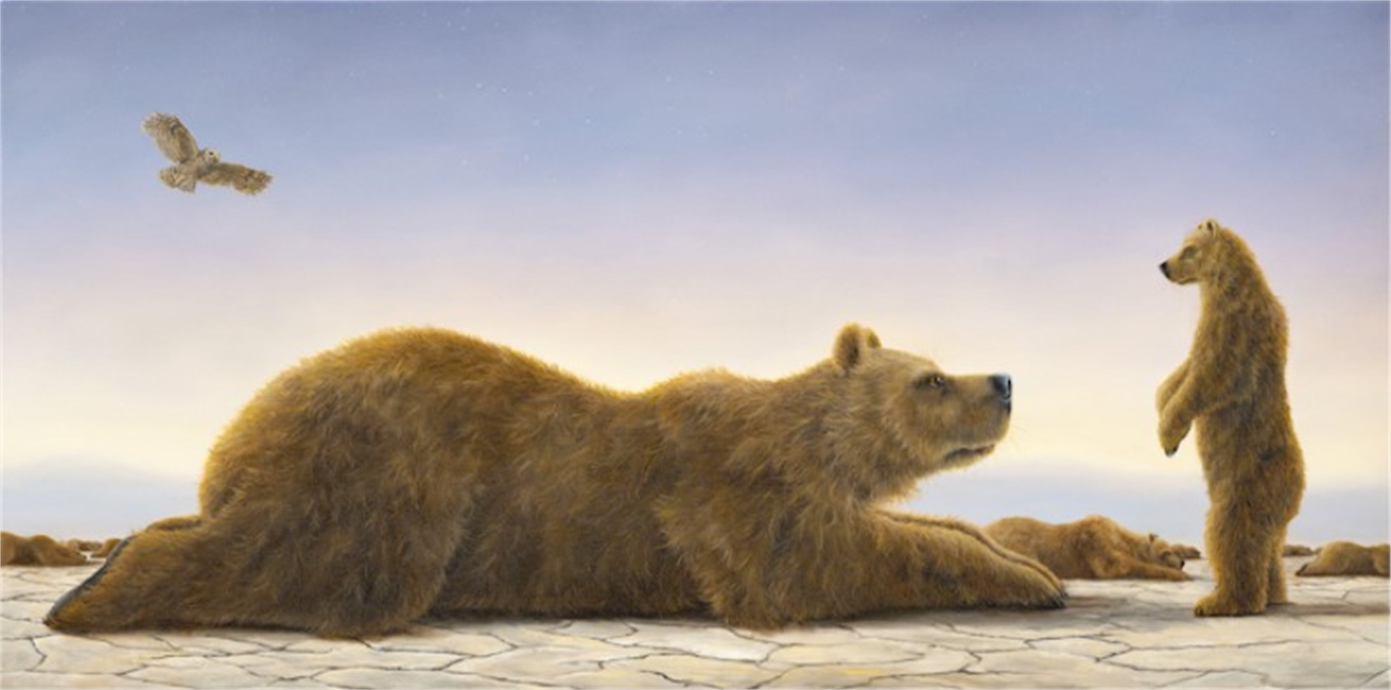 Dream, The by Robert Bissell