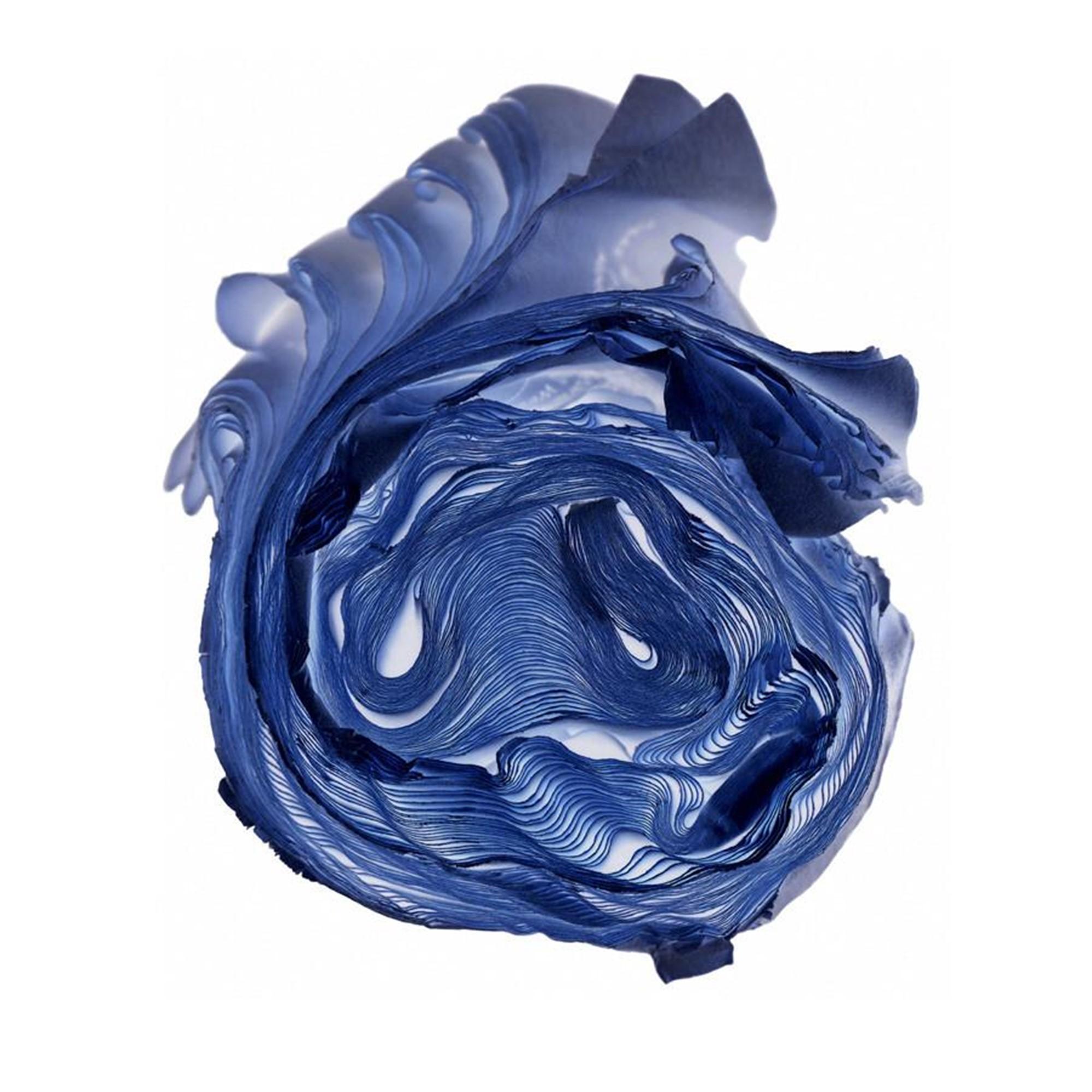 Blue Rose by Cara Barer