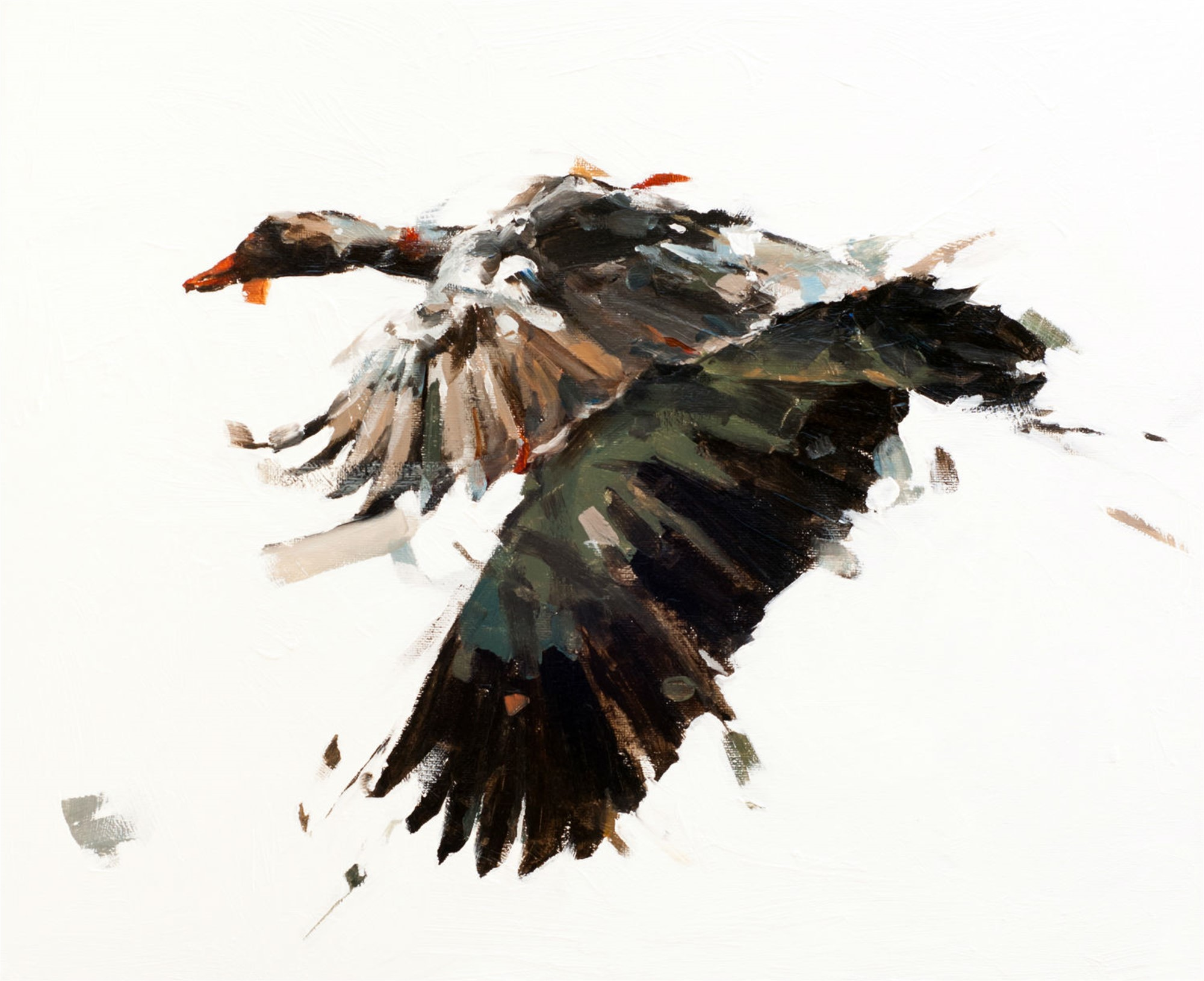 Goose II by Thibault Jandot