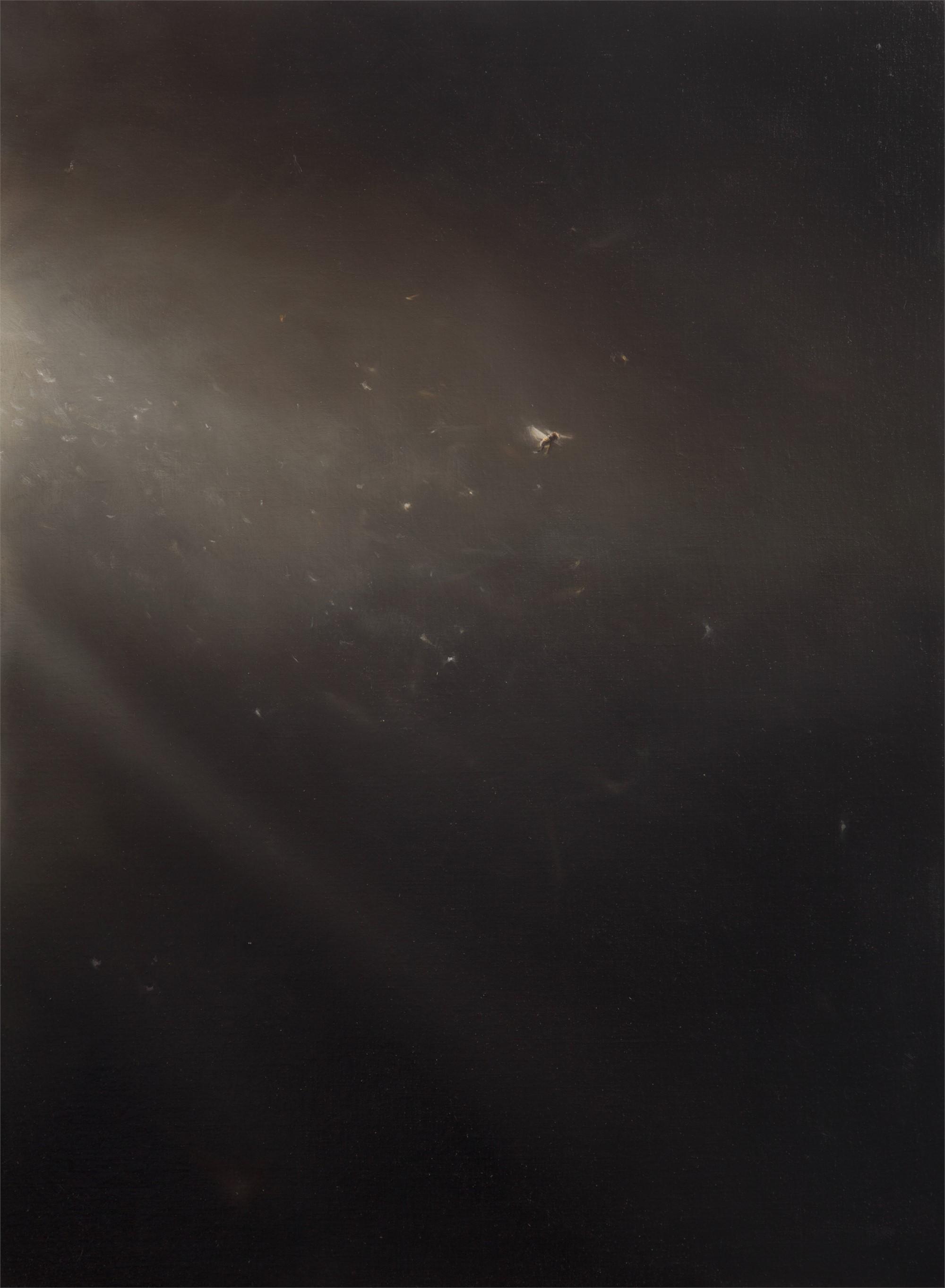 Lazarus by Robin Cole