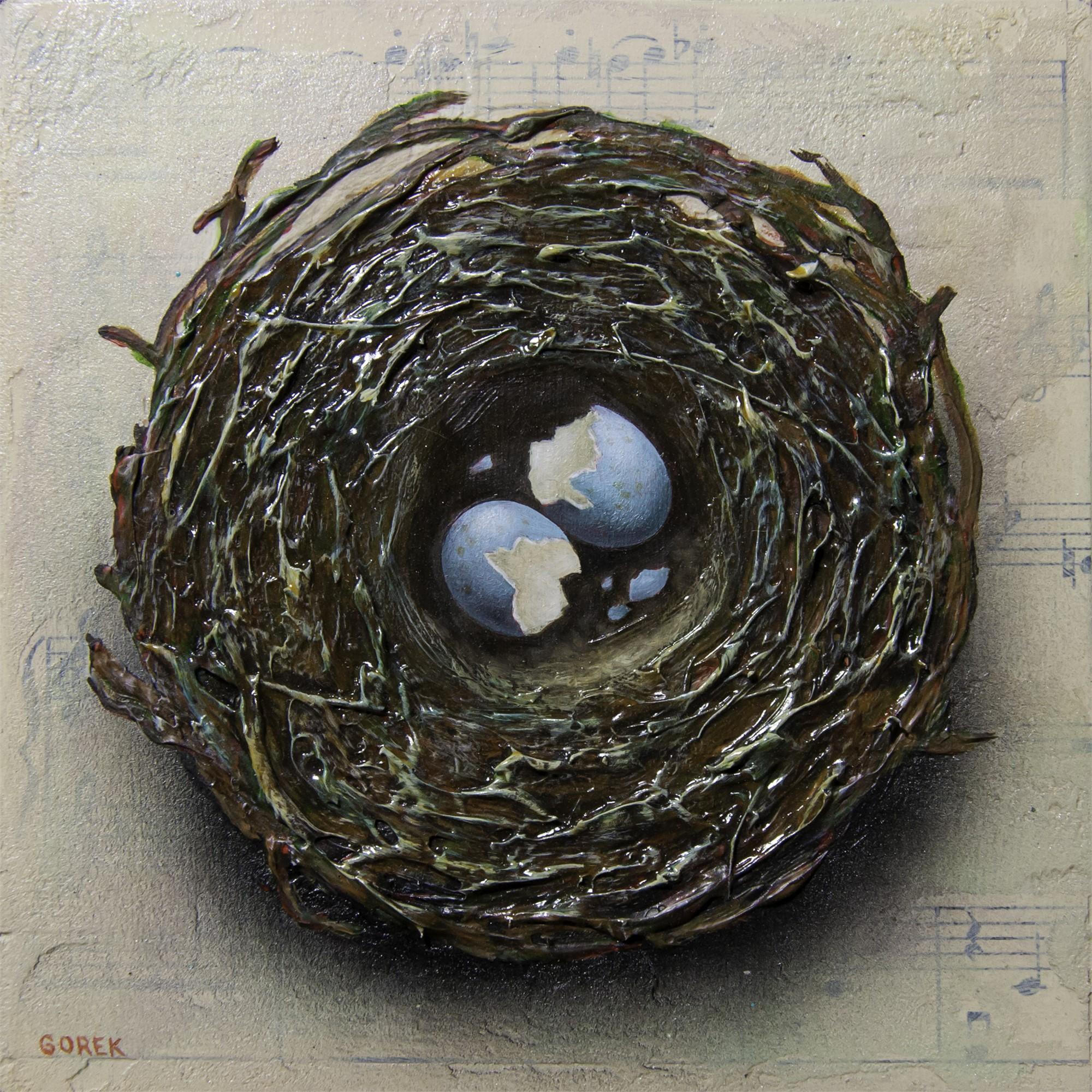 Birds Nest 2 by Thane Gorek