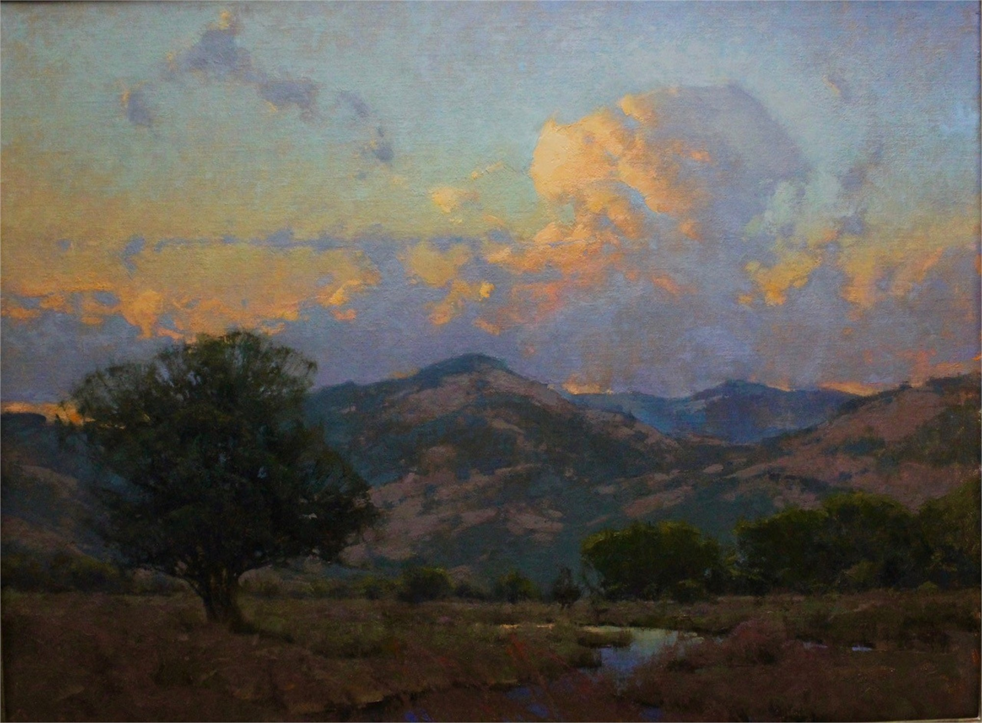 Summer Sky at Evening by Michael J Lynch