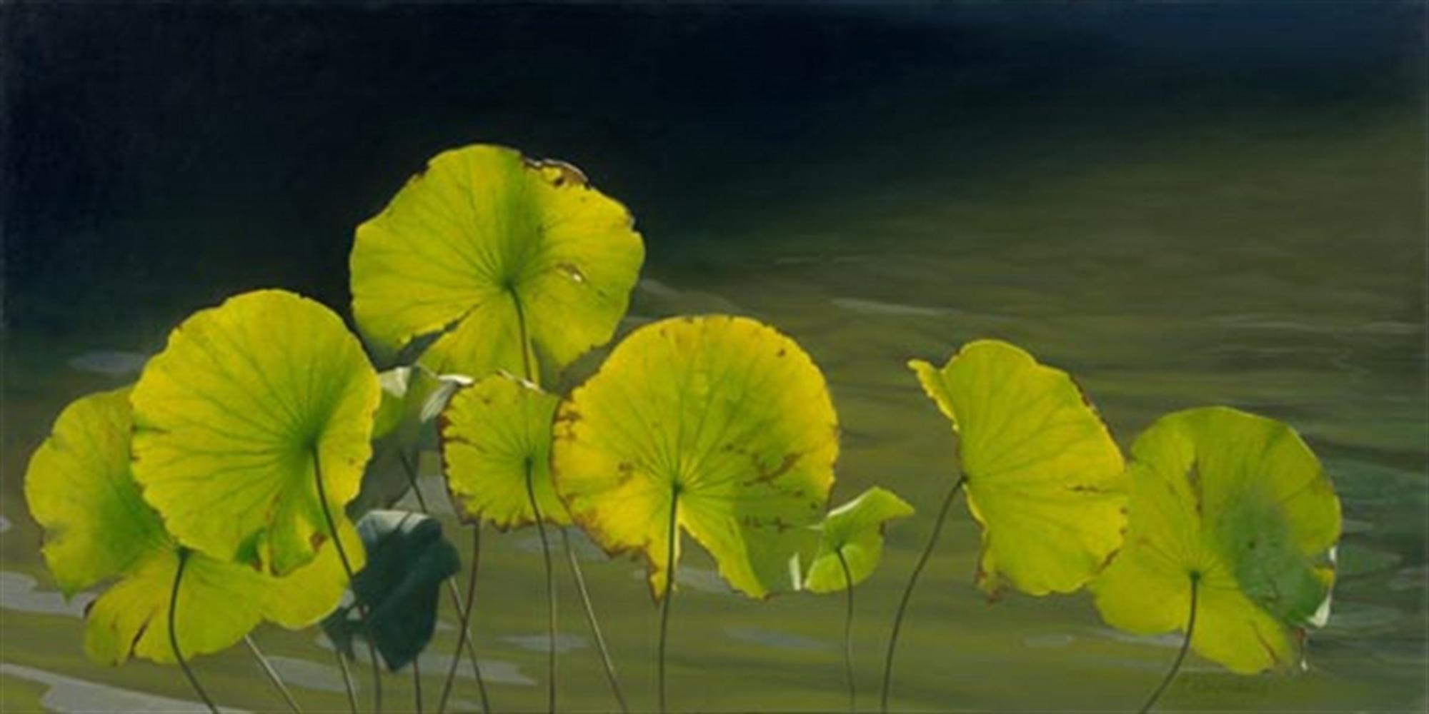 Lilypads by Tatyana Klevenskiy