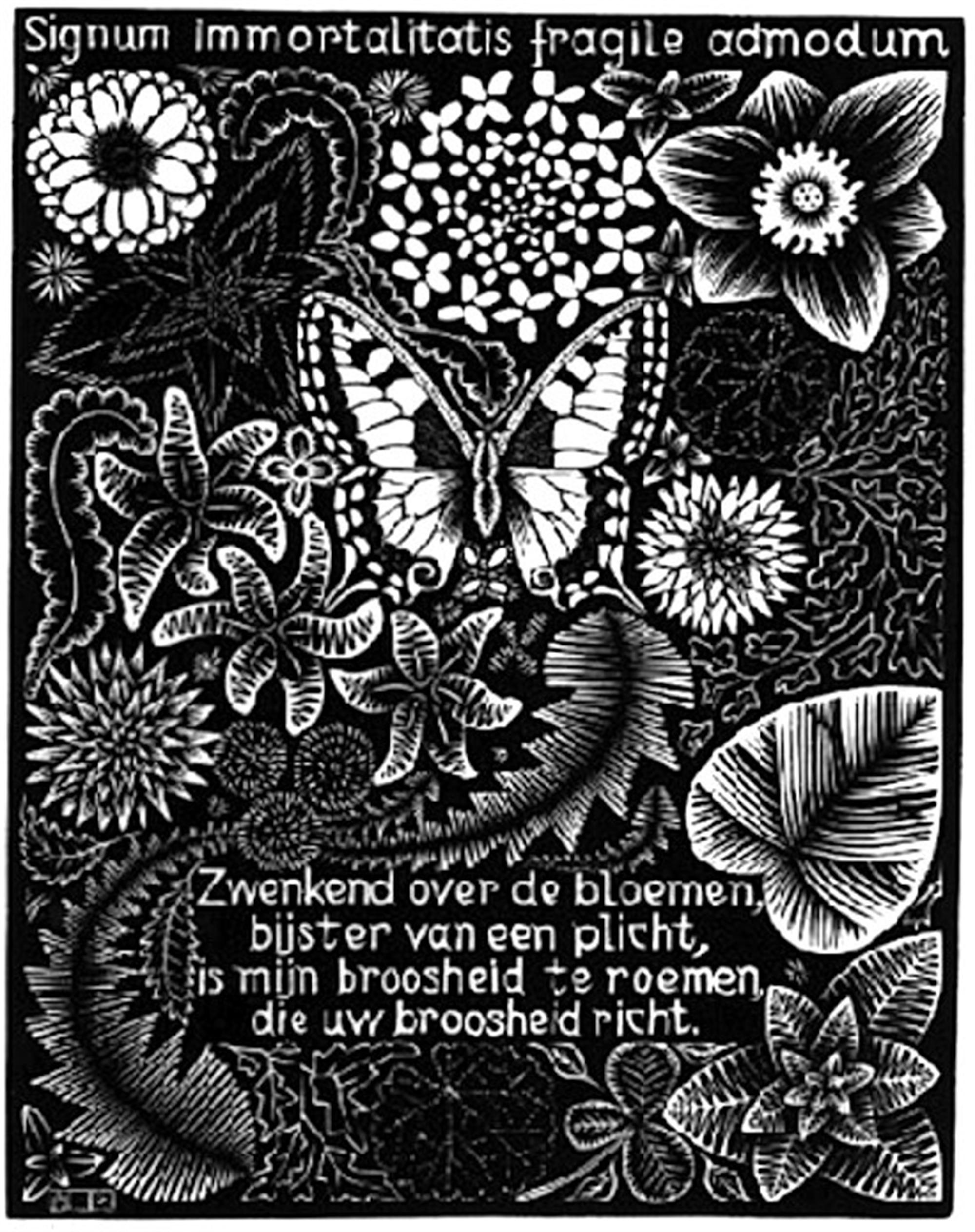 Emblemata - Butterfly by M.C. Escher