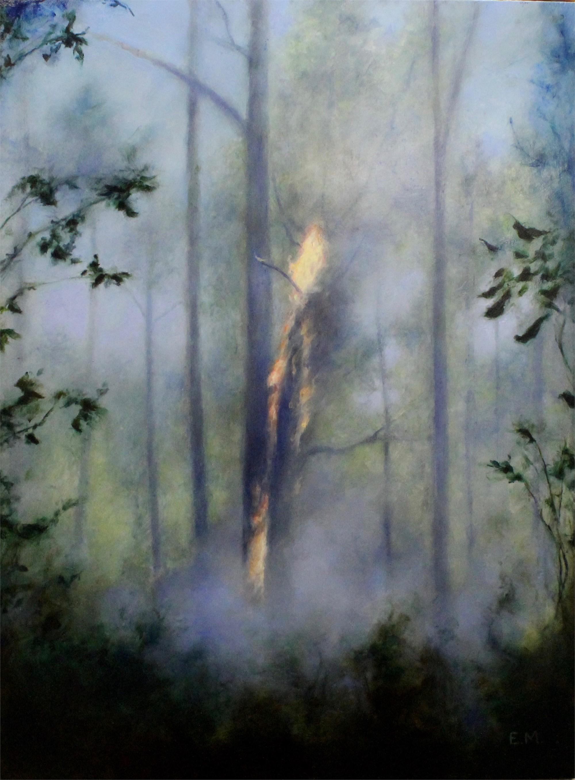 Controlled Burn by Elsa Muñoz