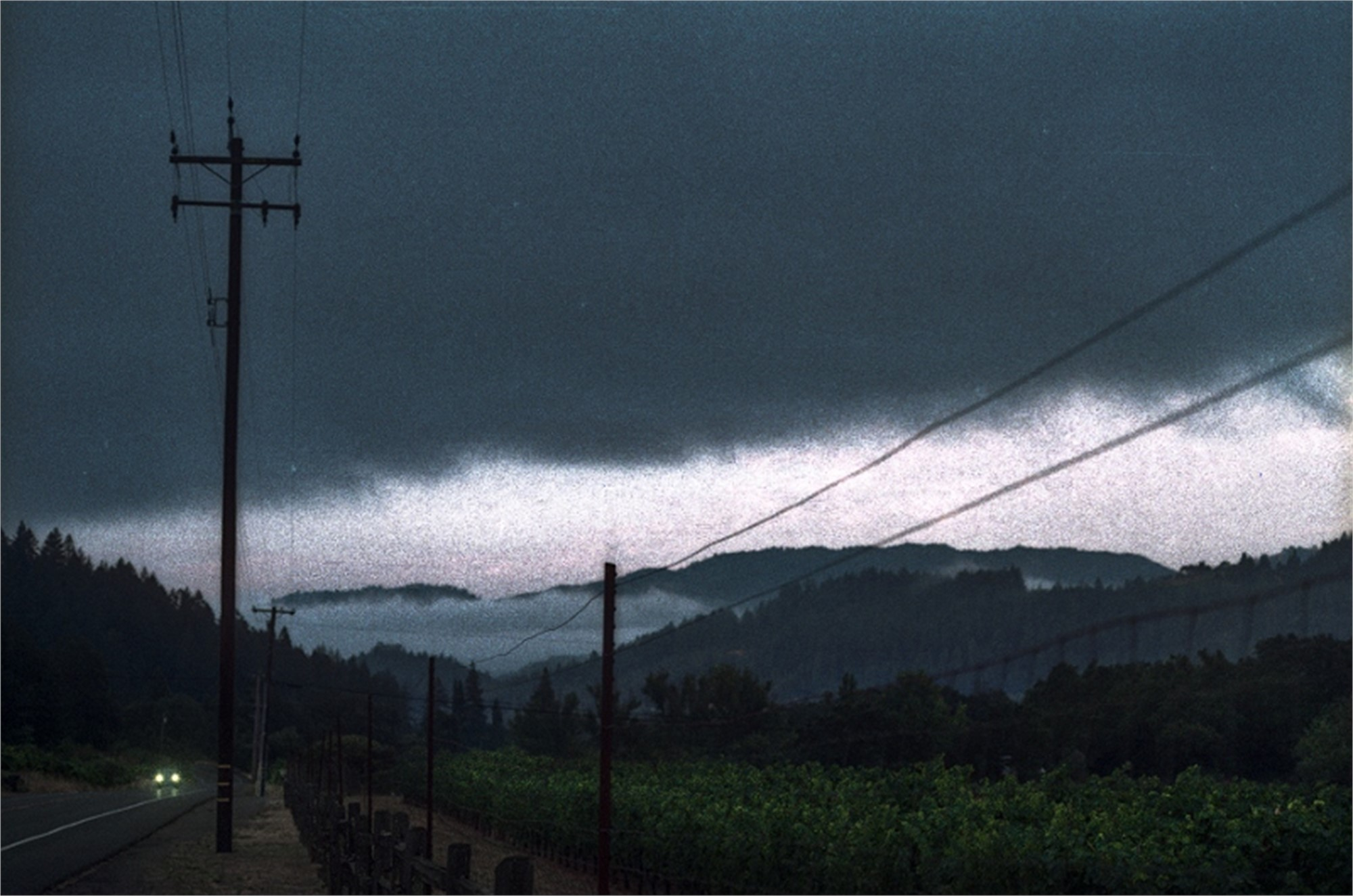Foggy Morning on the Trail by Sam Aslanian