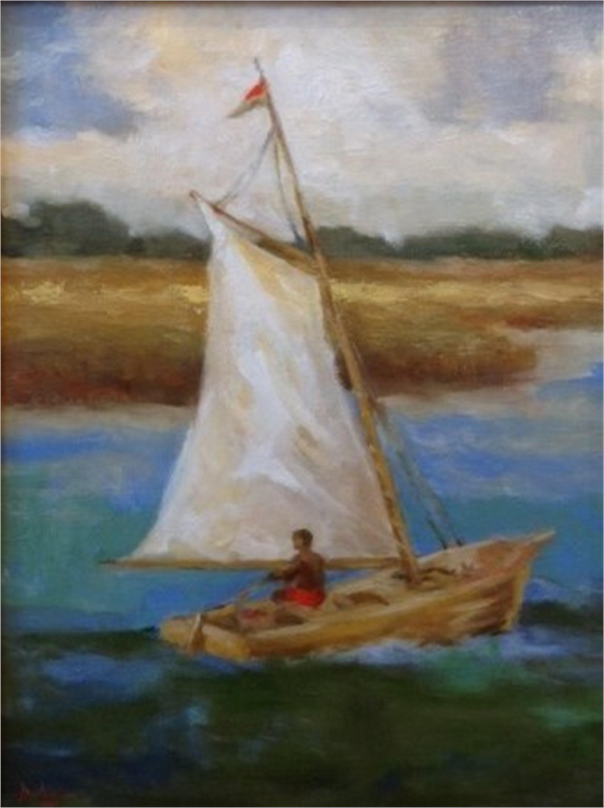 Afternoon Sail by Jim Darlington