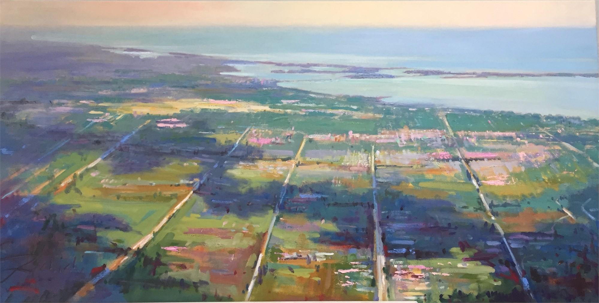 Sarasota From Above by Linda Richichi