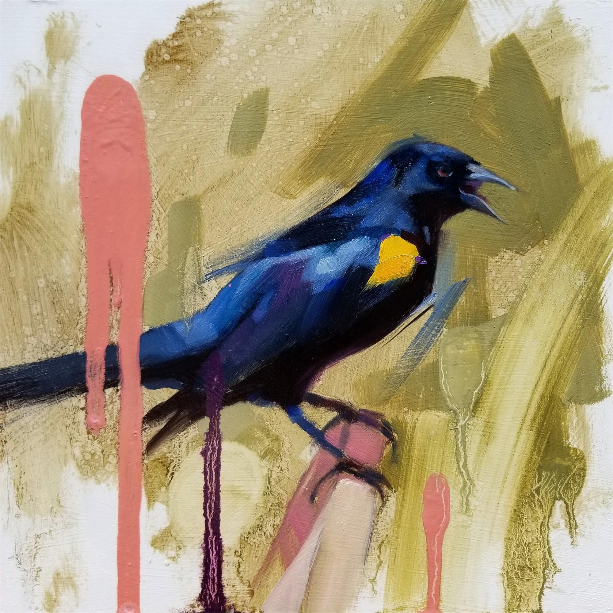 YS Blackbird by Ryan Morse