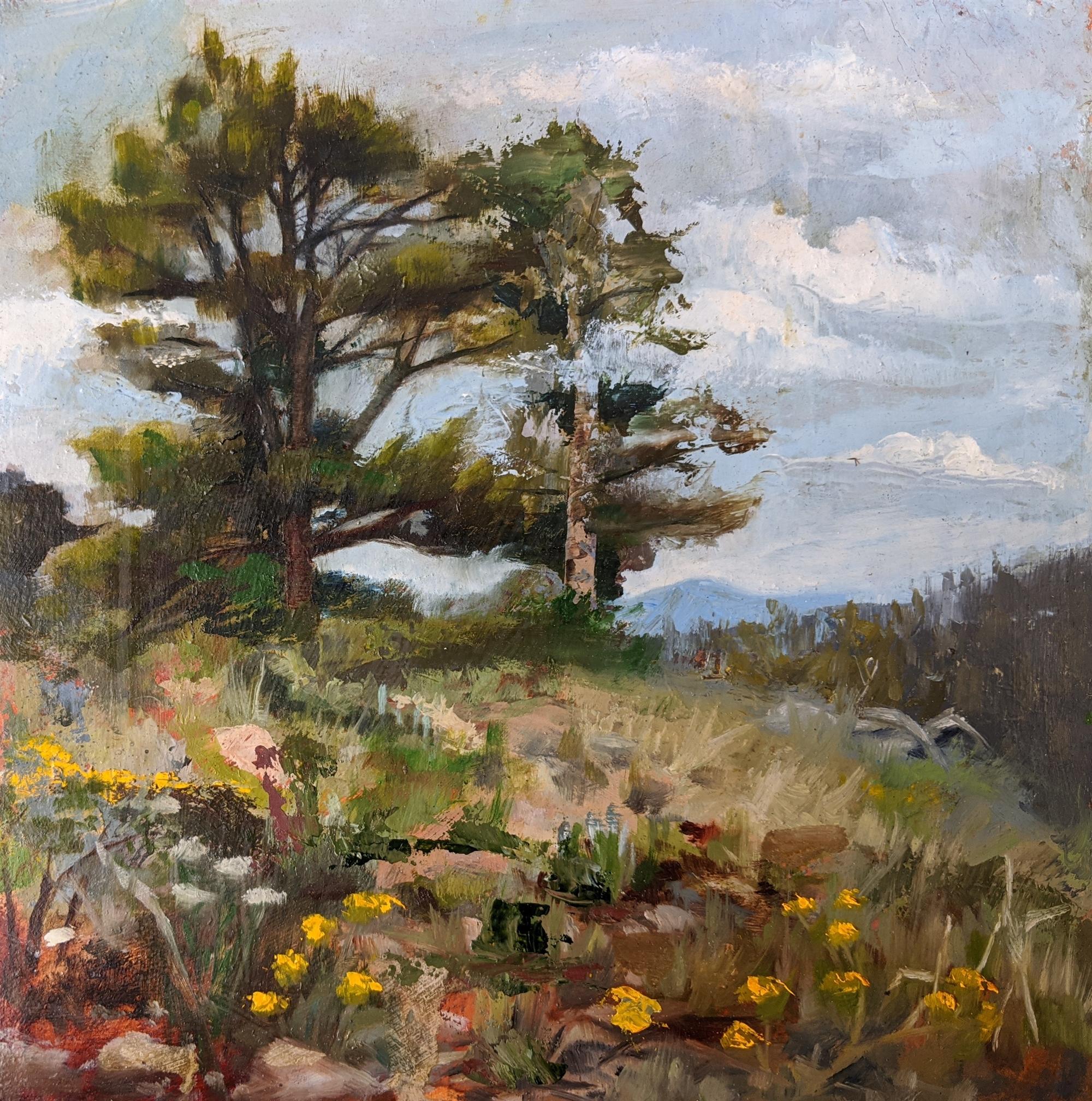 Landscape I by Caitlin Hurd