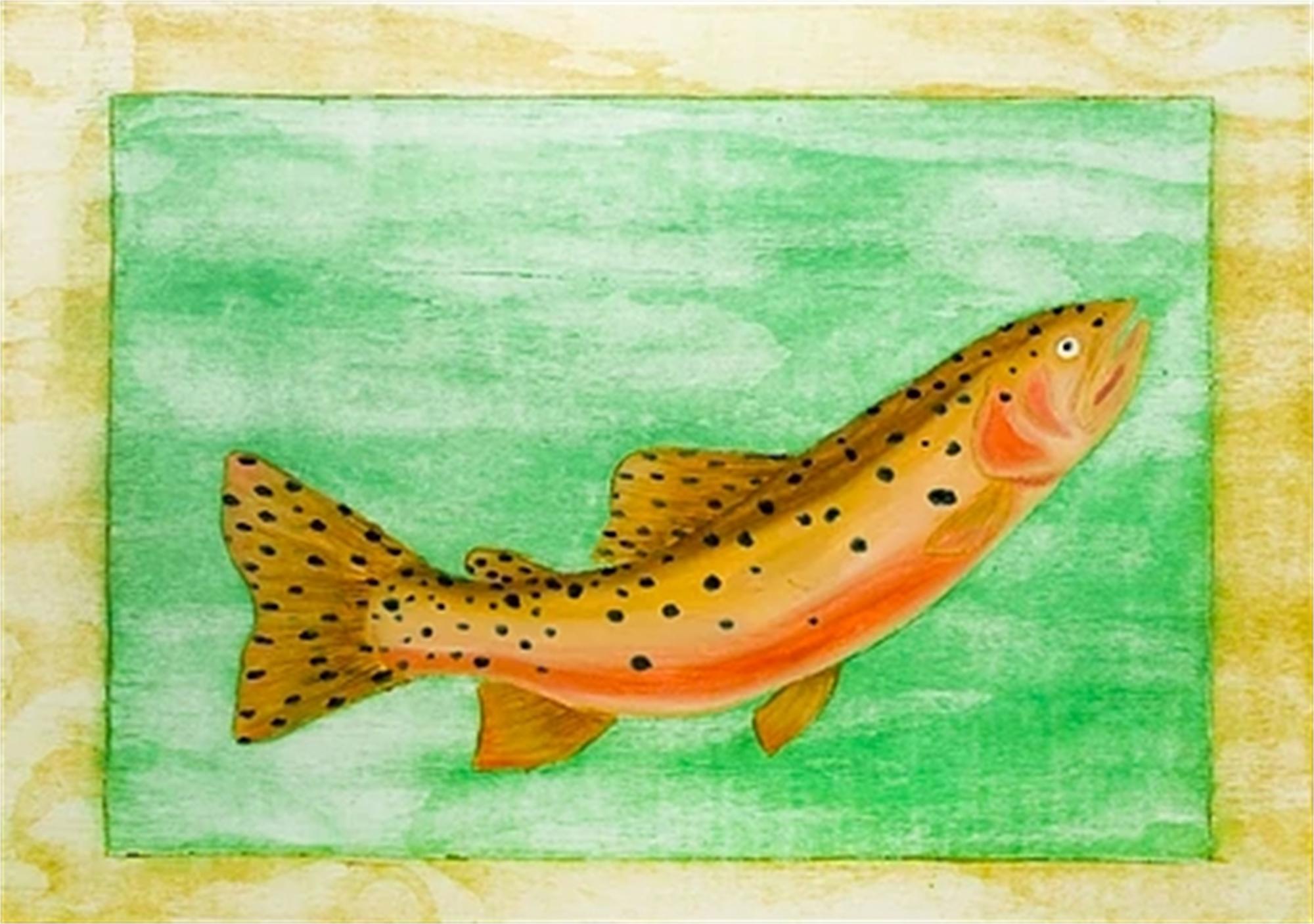 Cutthroat Trout by David Hefner