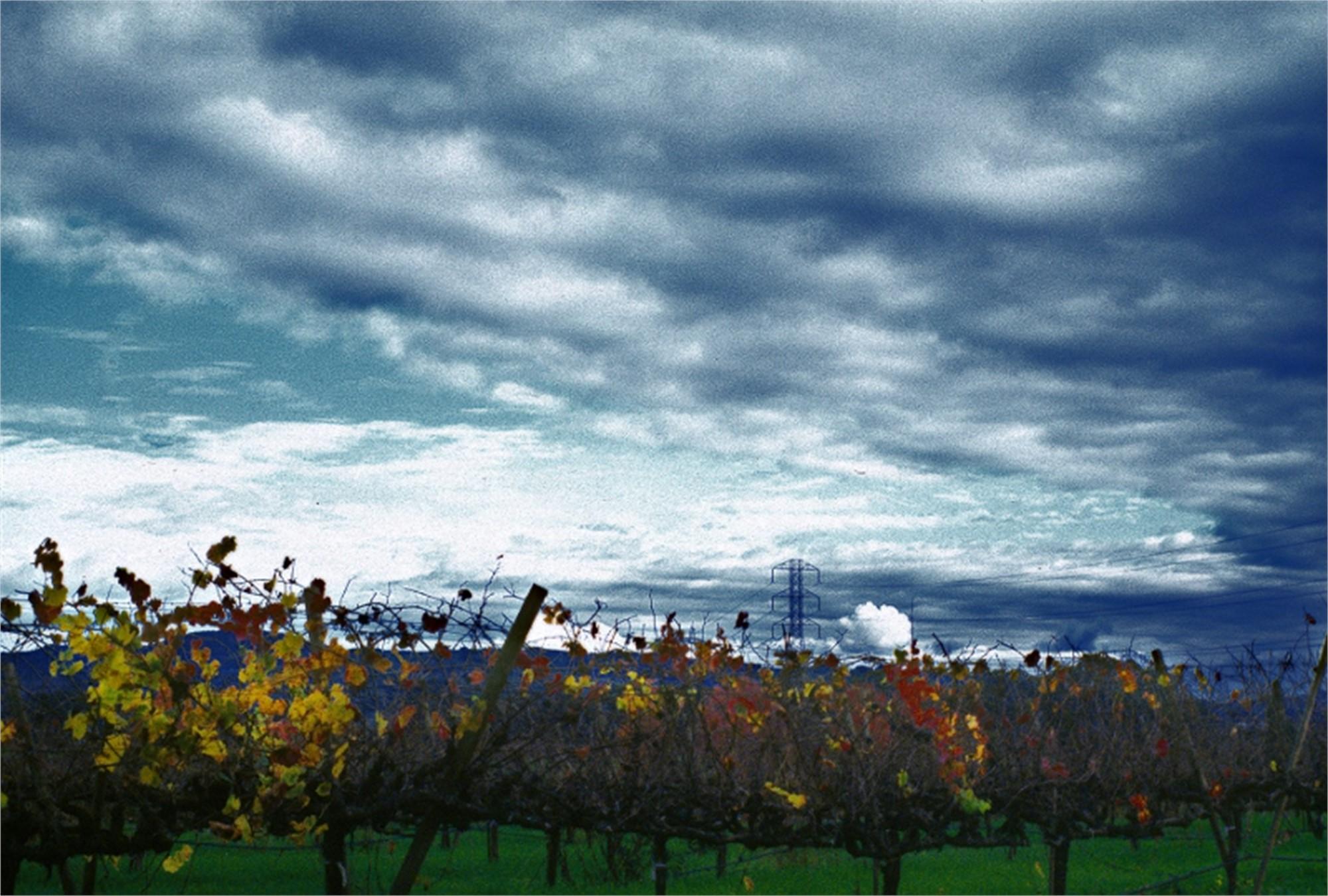 Autumn Sky Carneros by Sam Aslanian