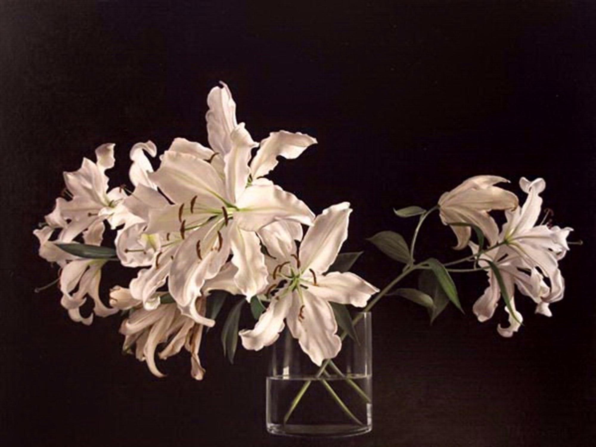 Lilies on Black by Tatyana Klevenskiy