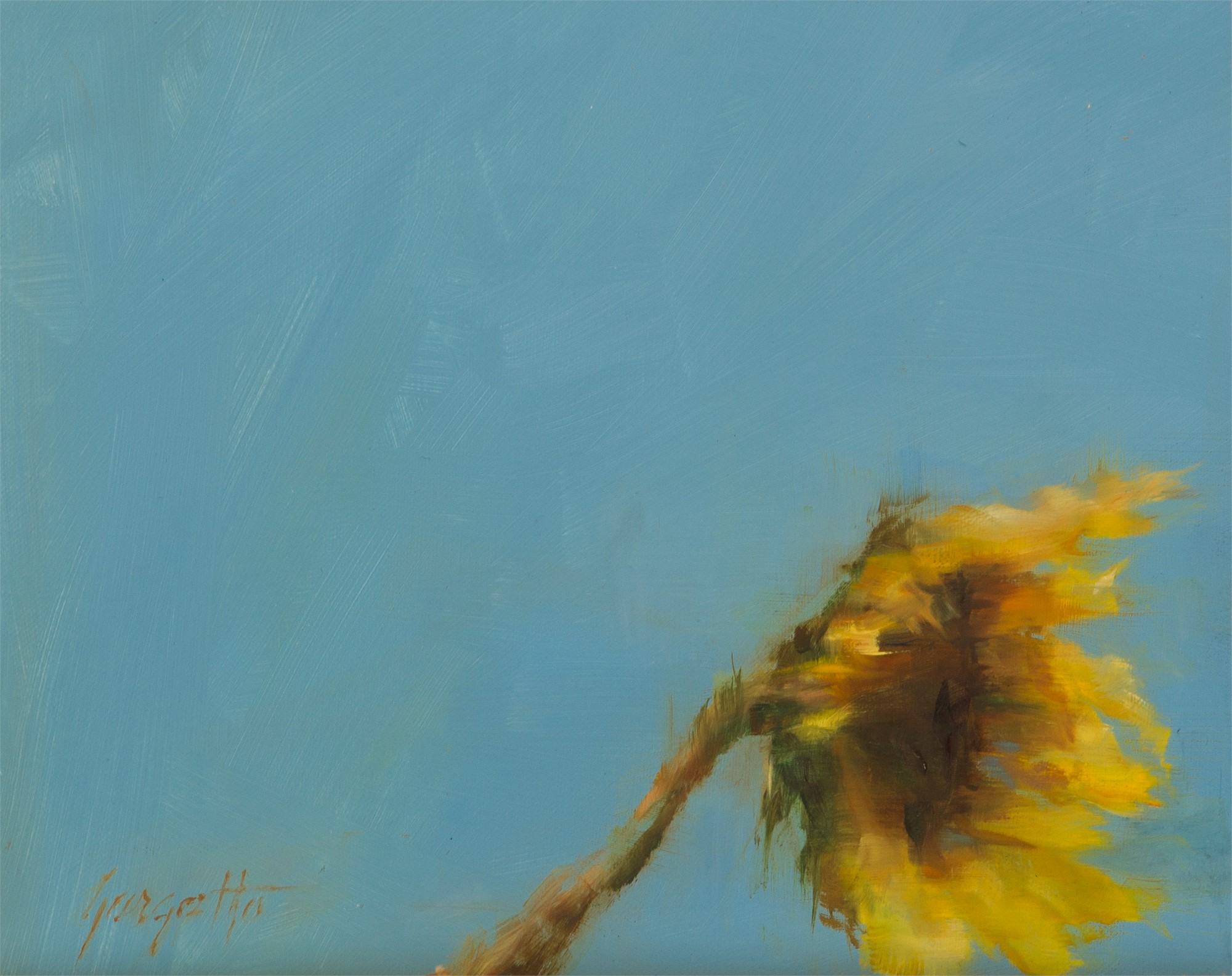 In the Breeze Study #1 by Ann Gargotto