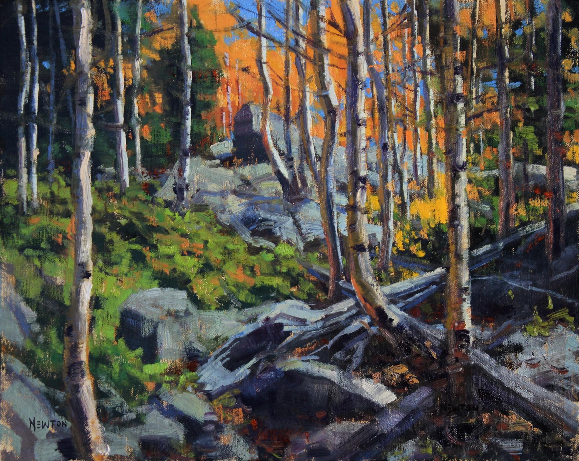 Aspen Standoff Study by Wes Newton