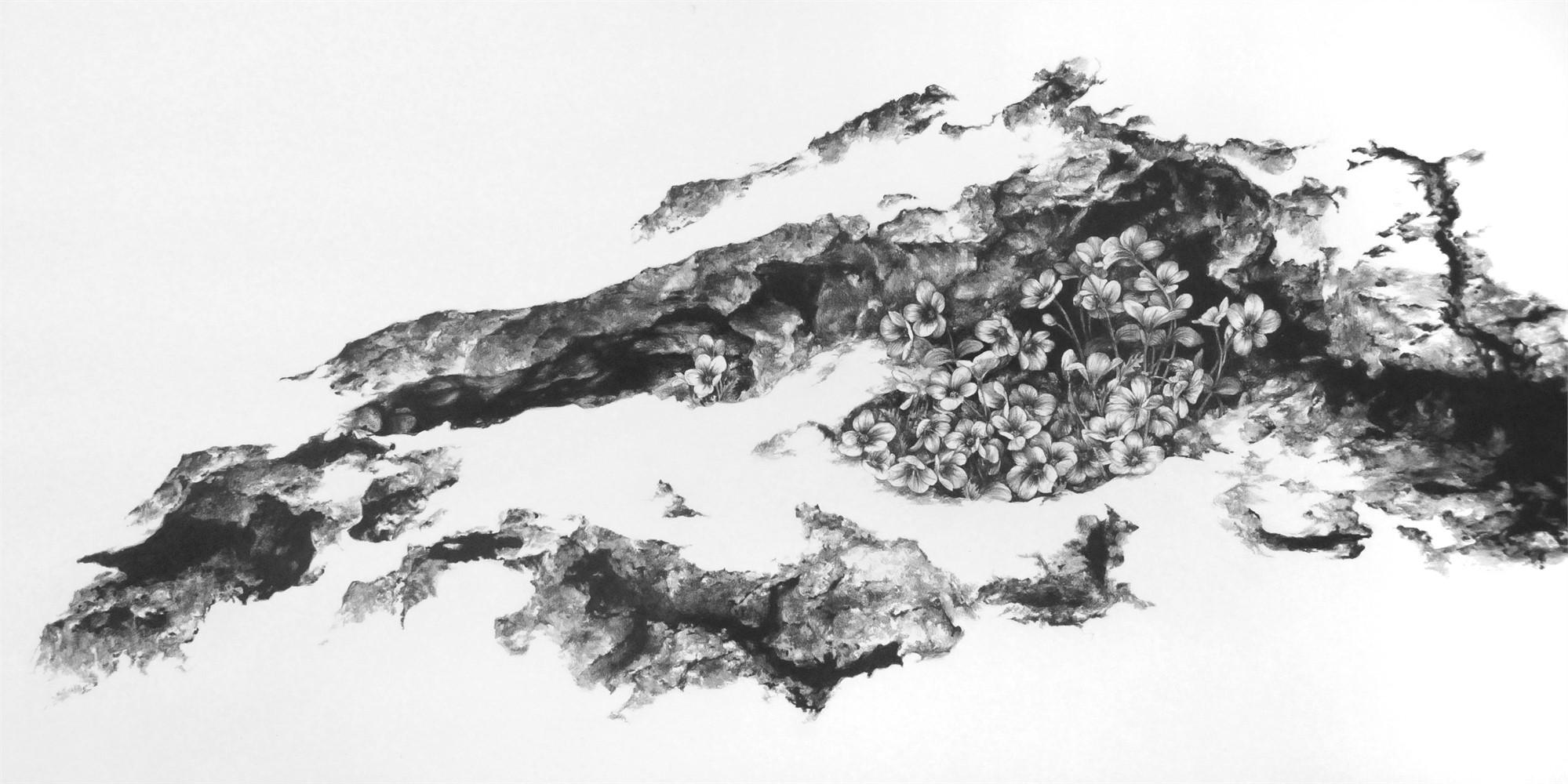The Fertile Rock I by Robin Cole