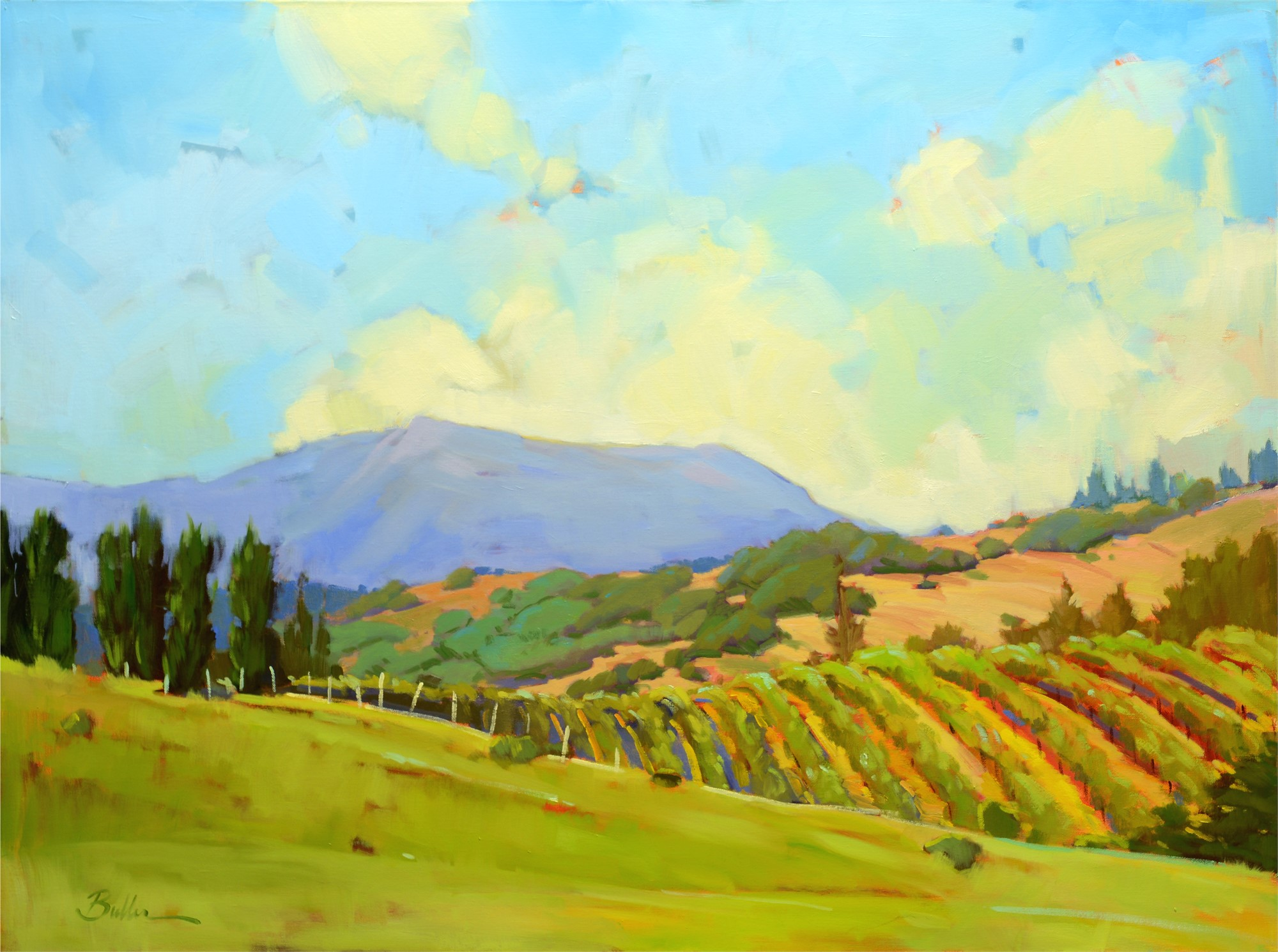 Mt St Helena by Samantha Buller