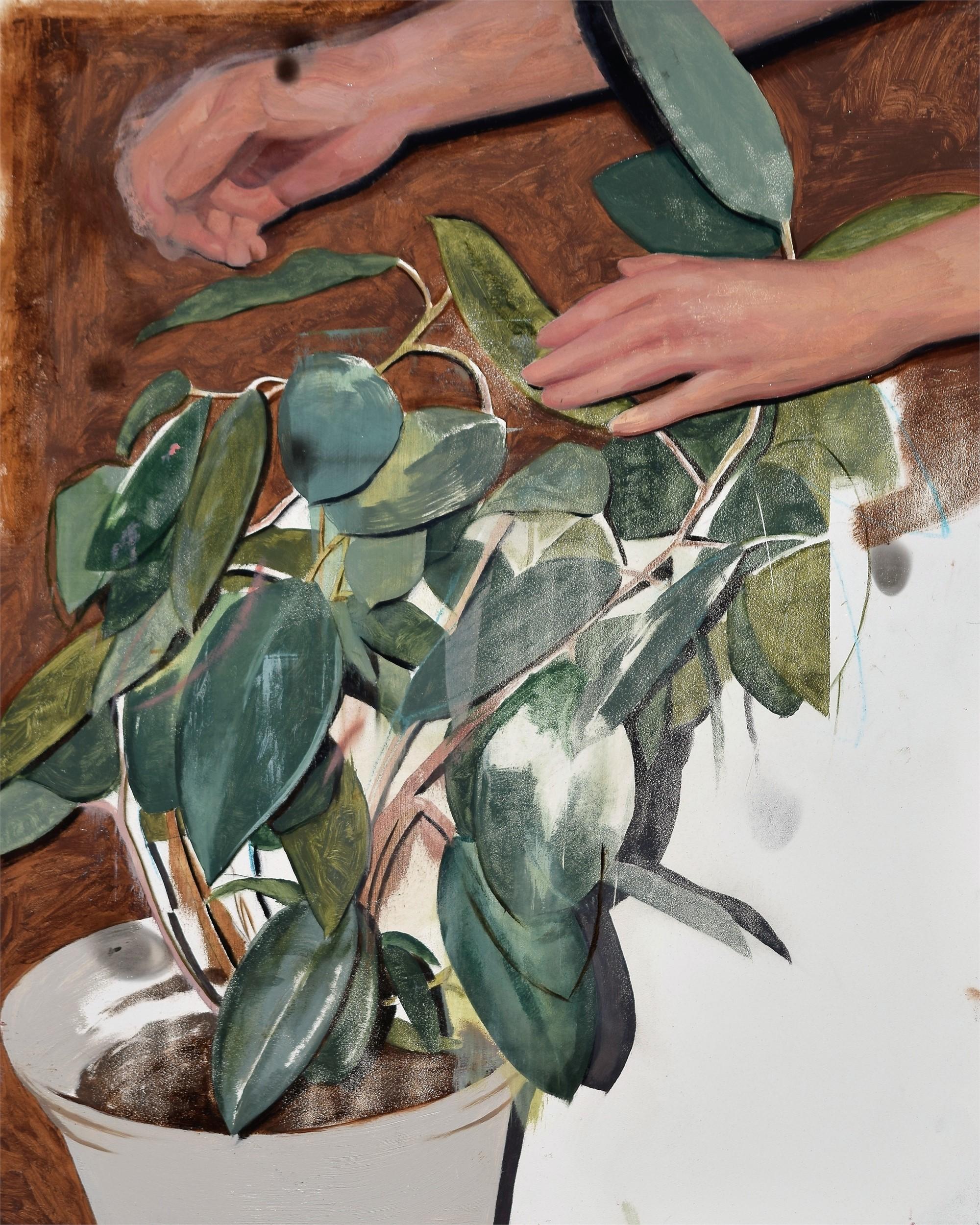 Rubber Plant by Daniel Segrove