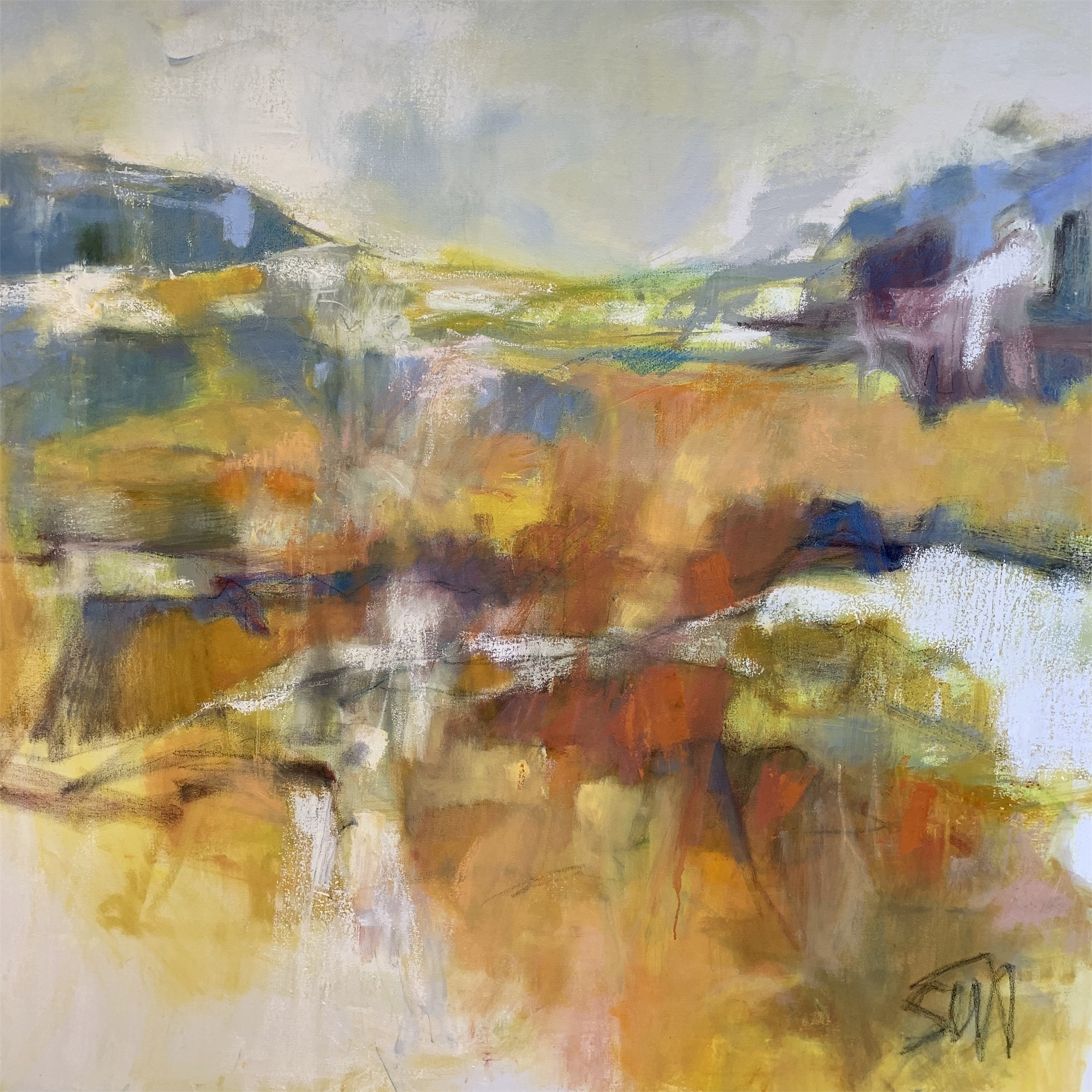 The Layers of Time by Susan Altman