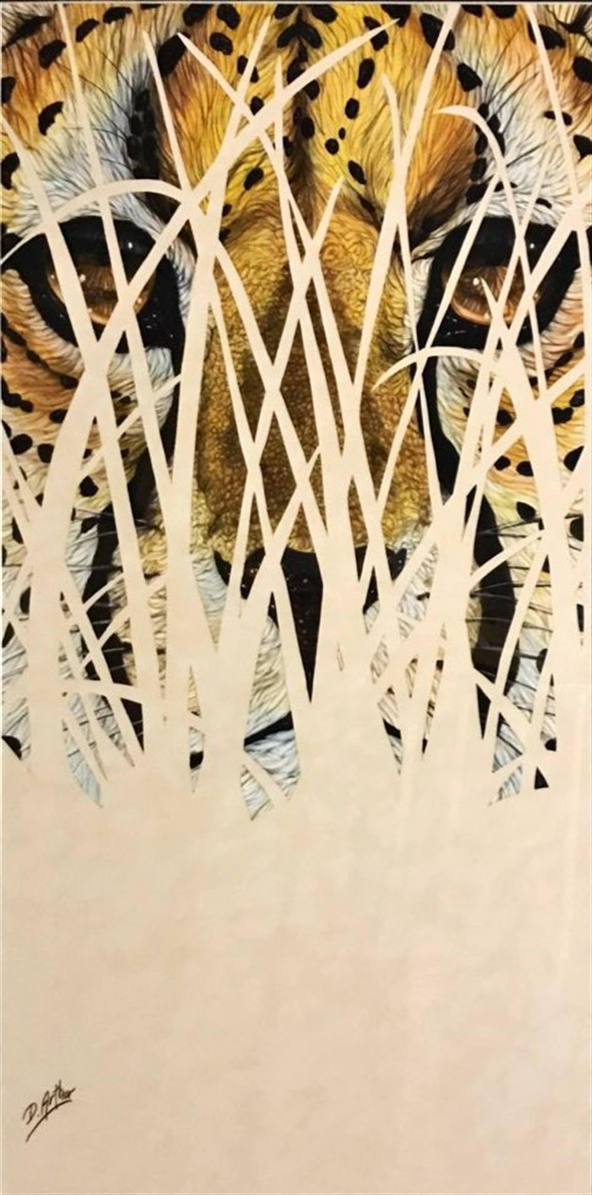 Hidden Series Cheetah by D. Arthur