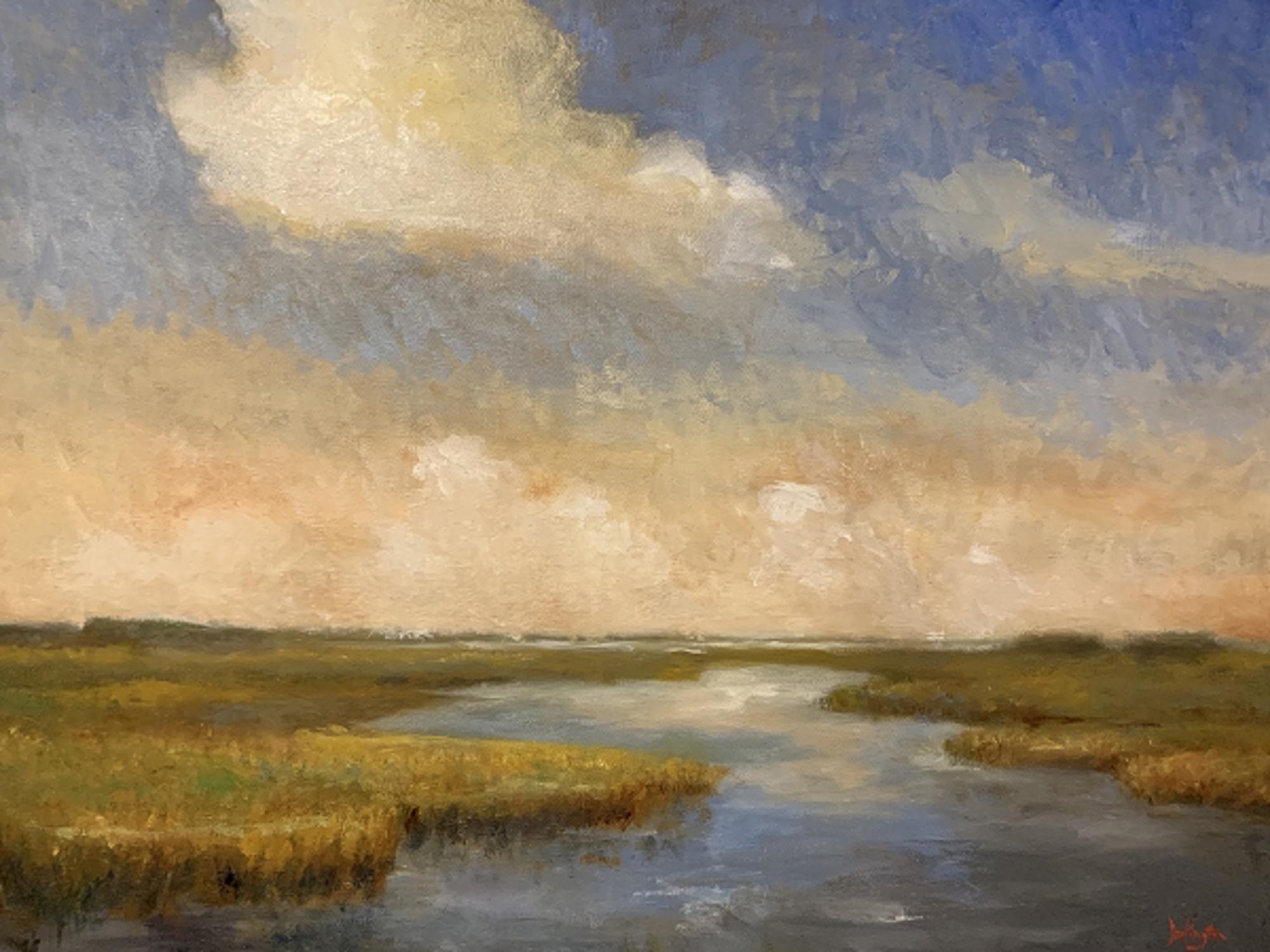 August Skies by Jim Darlington