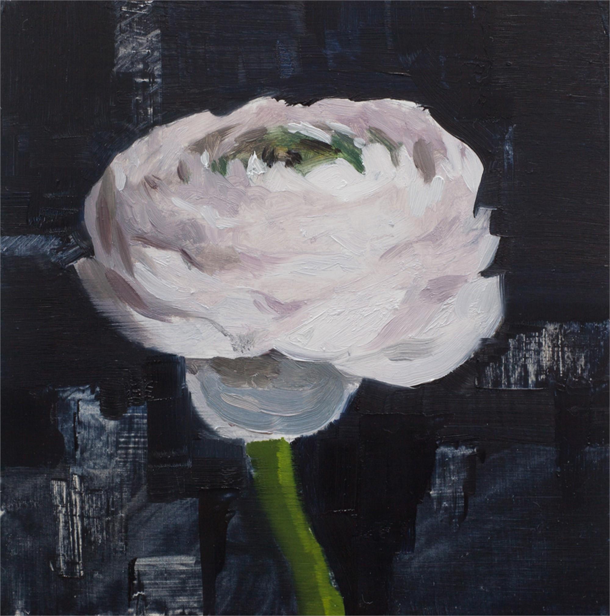 Ranunculus Study by Jon Doran