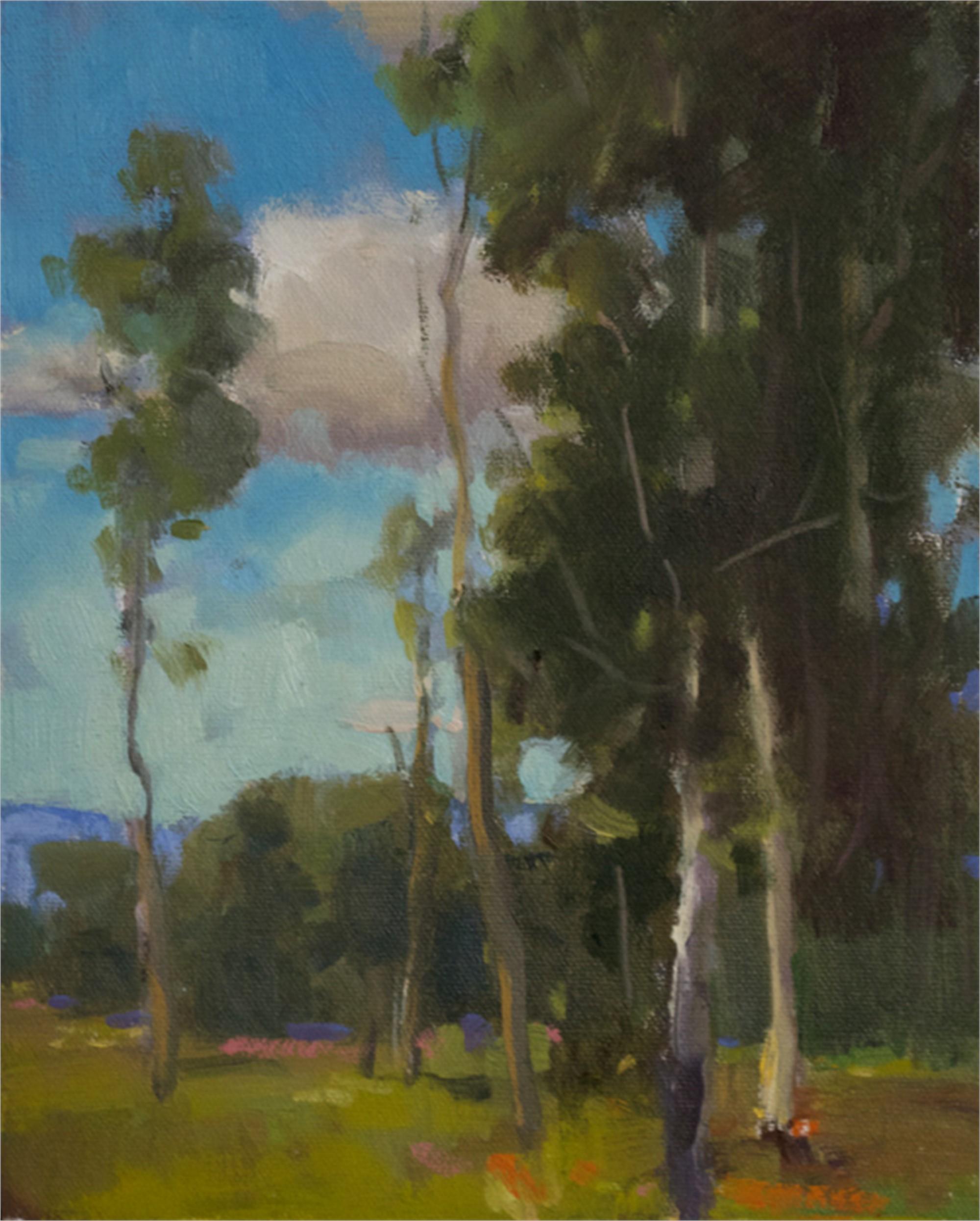 Aspens in June by Samantha Buller