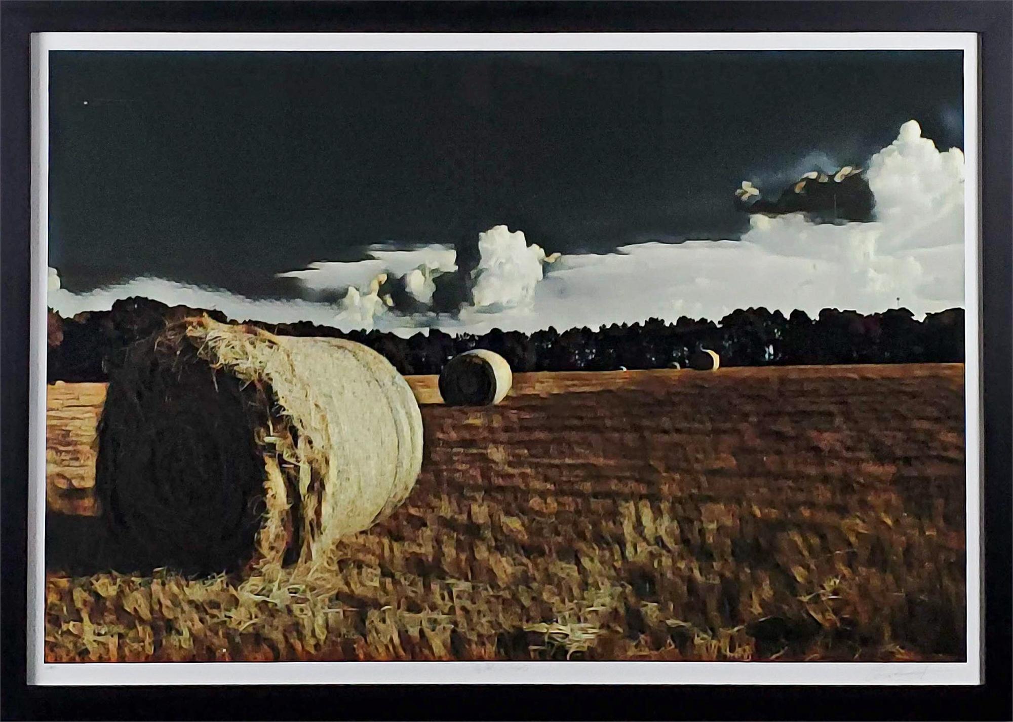 Hayroll by Robert Santore