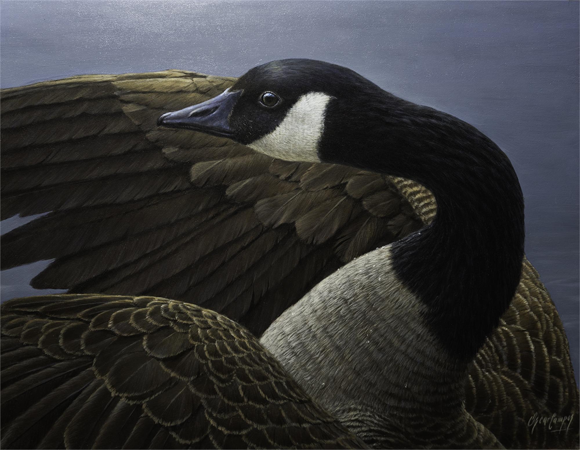 En Su Plenitud (Canadian Goose) by Oscar Campos