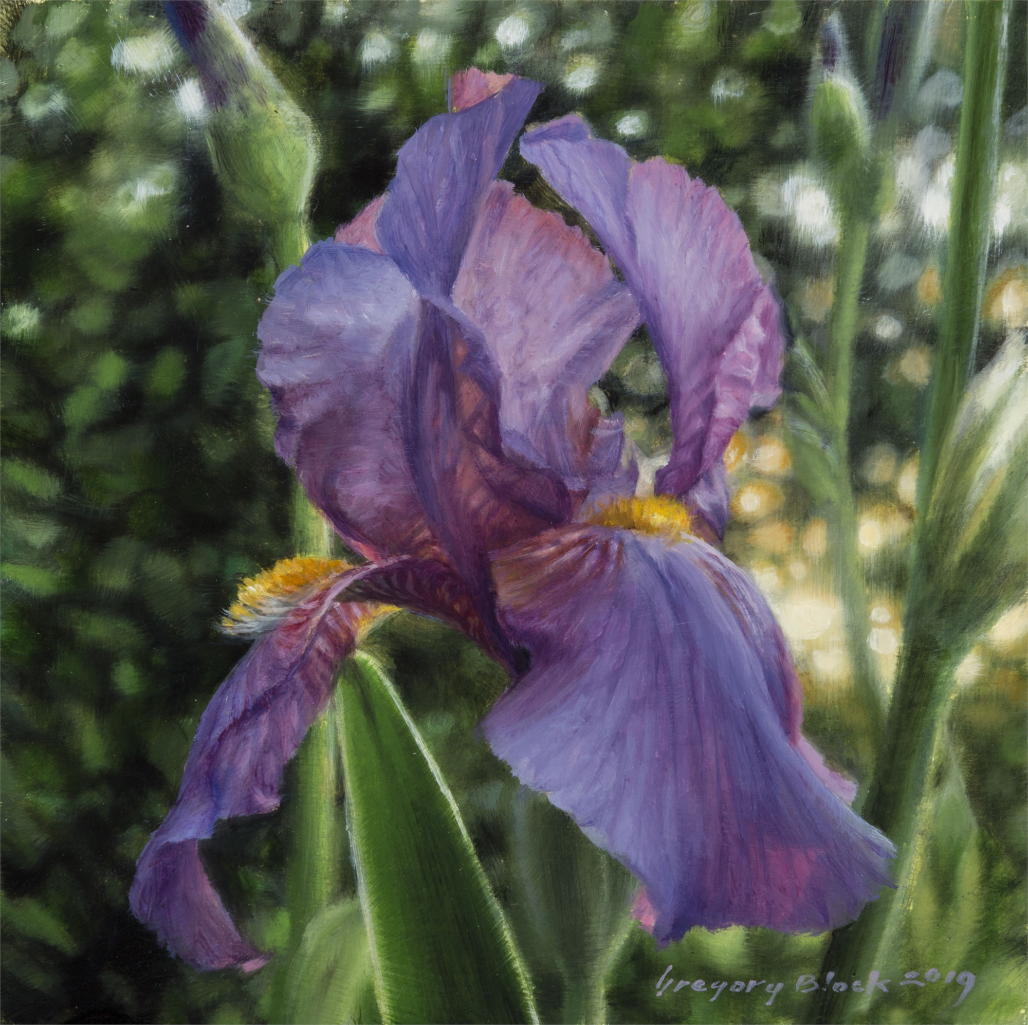 Iris 3 by Gregory Block
