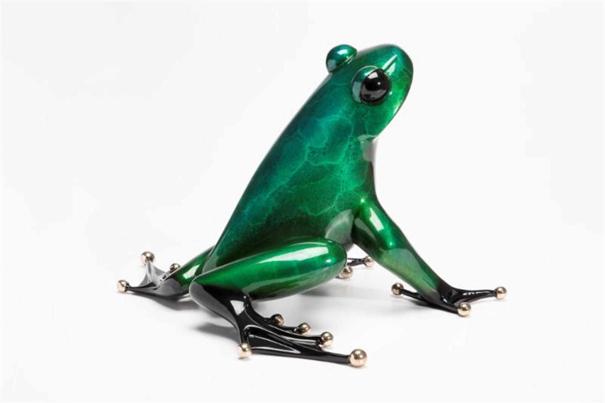 Ferguson Green Patina by The Frogman