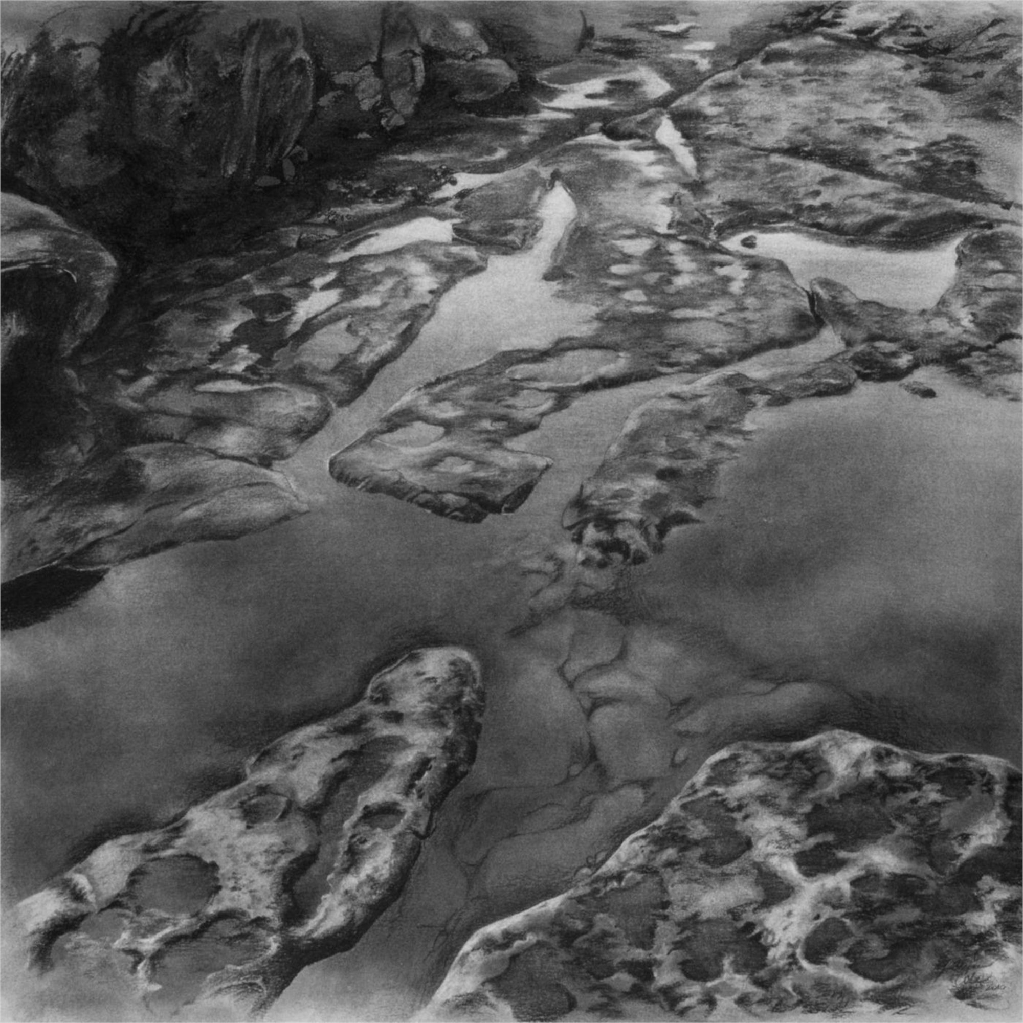 Intertidal by Robin Cole