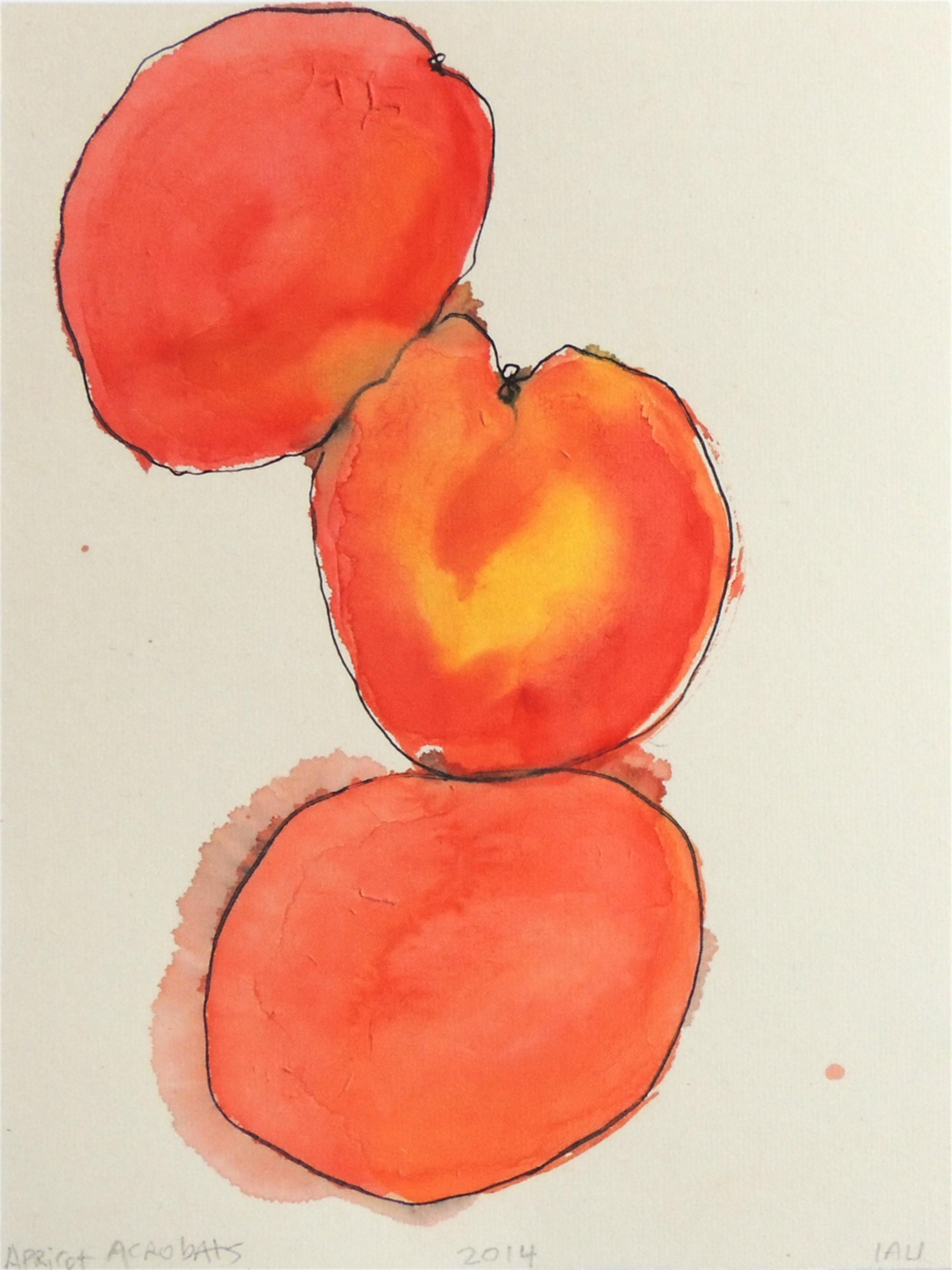 apricot acrobats by Alan Lau