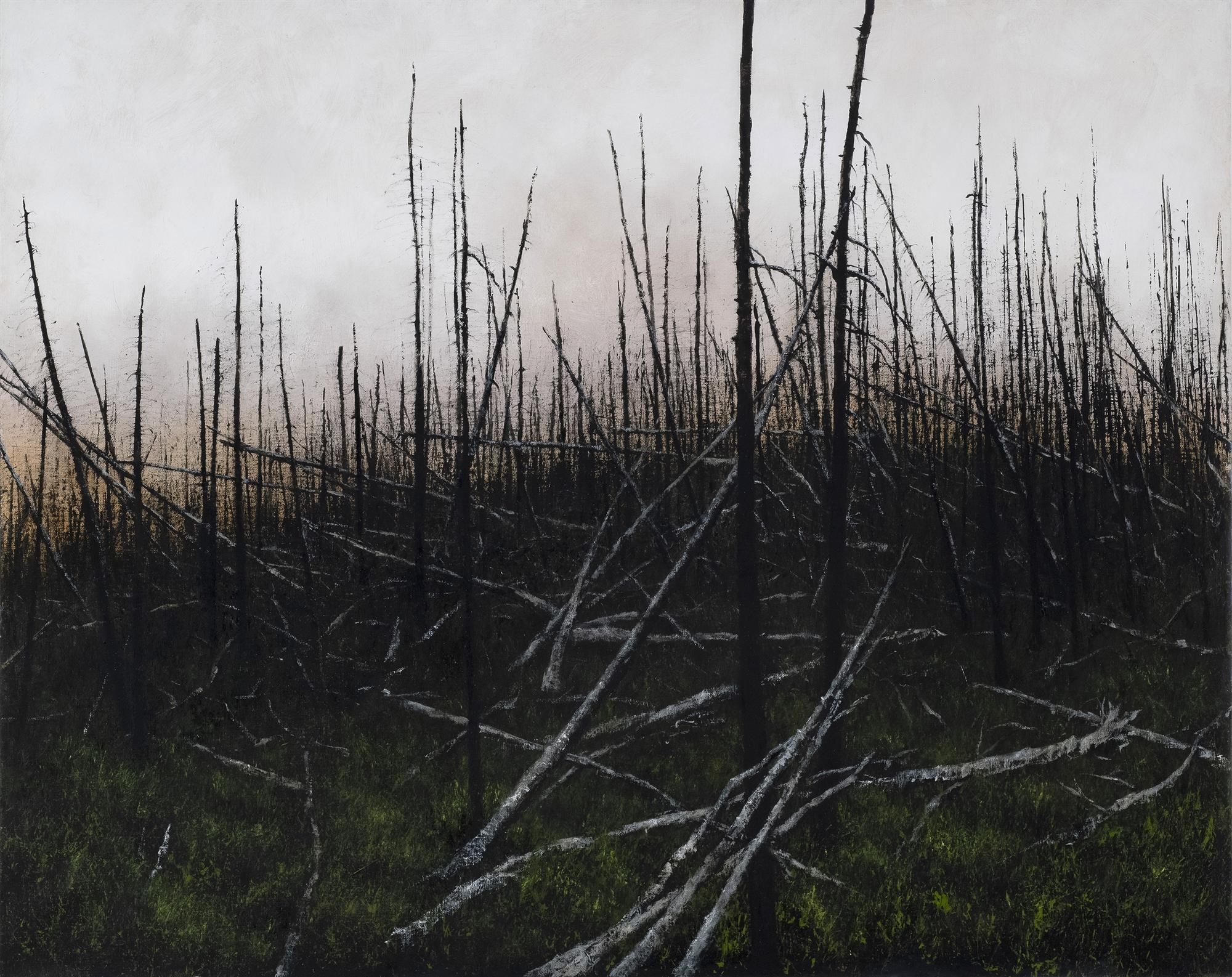 Prescribed Burn by Lisa Lebofsky