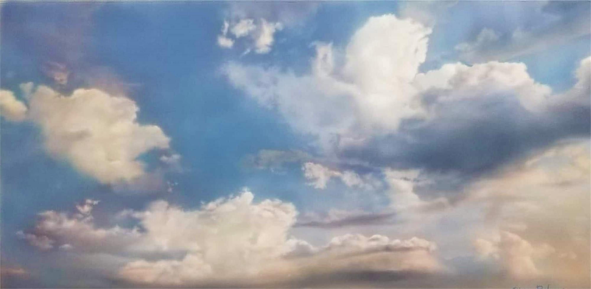 Light Dreams by Silvia Belviso