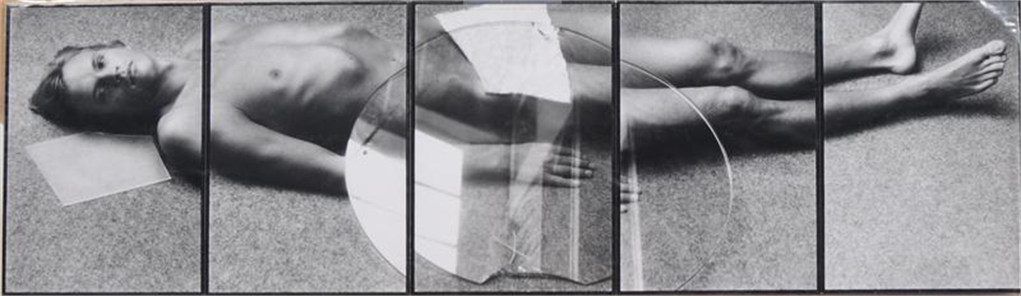 FIVE PANEL NUDE RECLINING by David Seidner