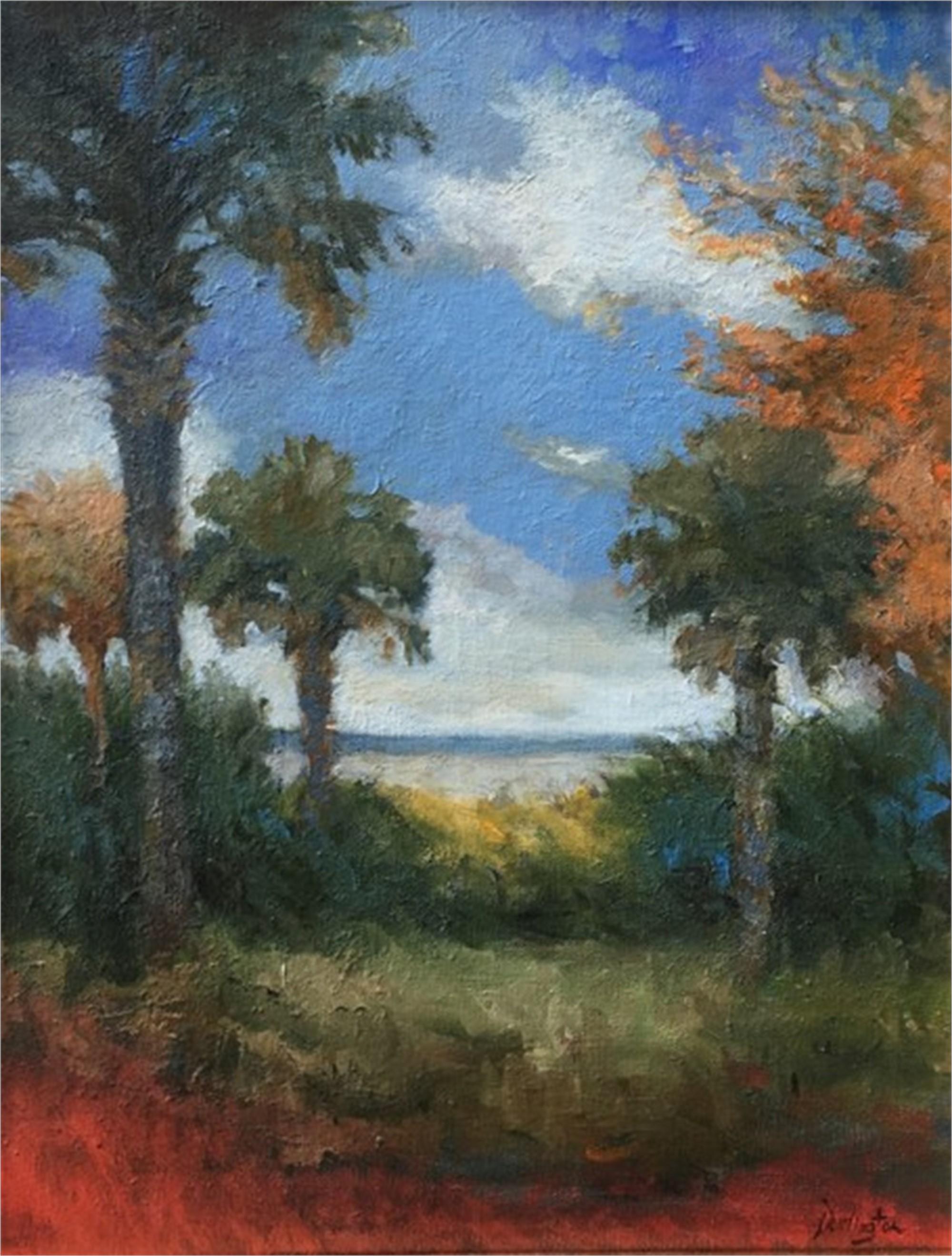 Quiet Splendor by Jim Darlington