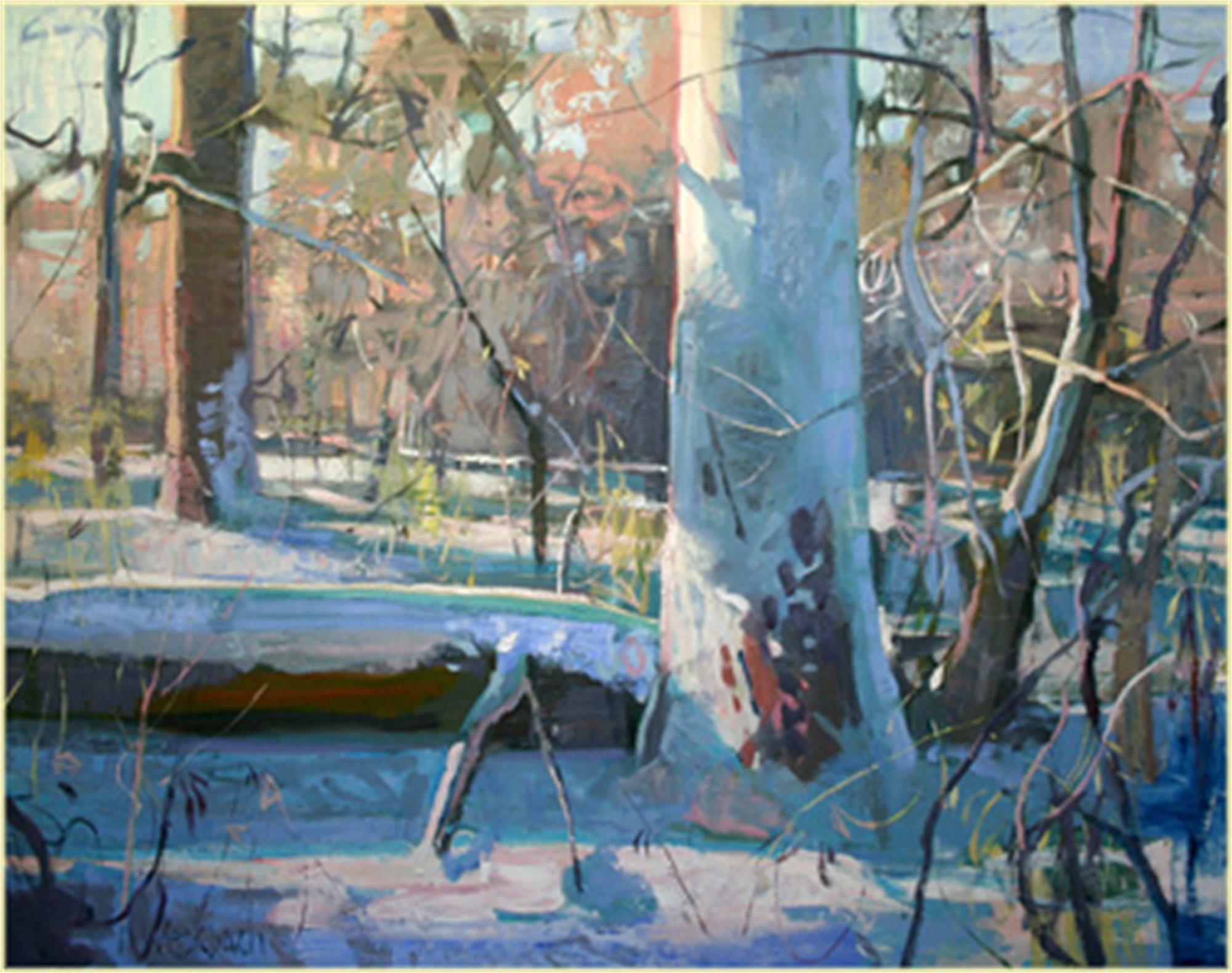 Winter by Kevin Weckbach