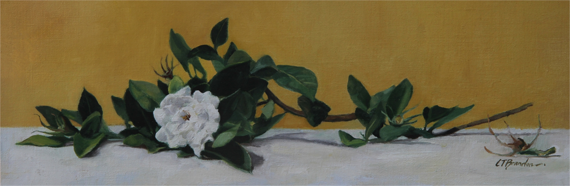 Gardenia on Her Side by Linda Tracey Brandon