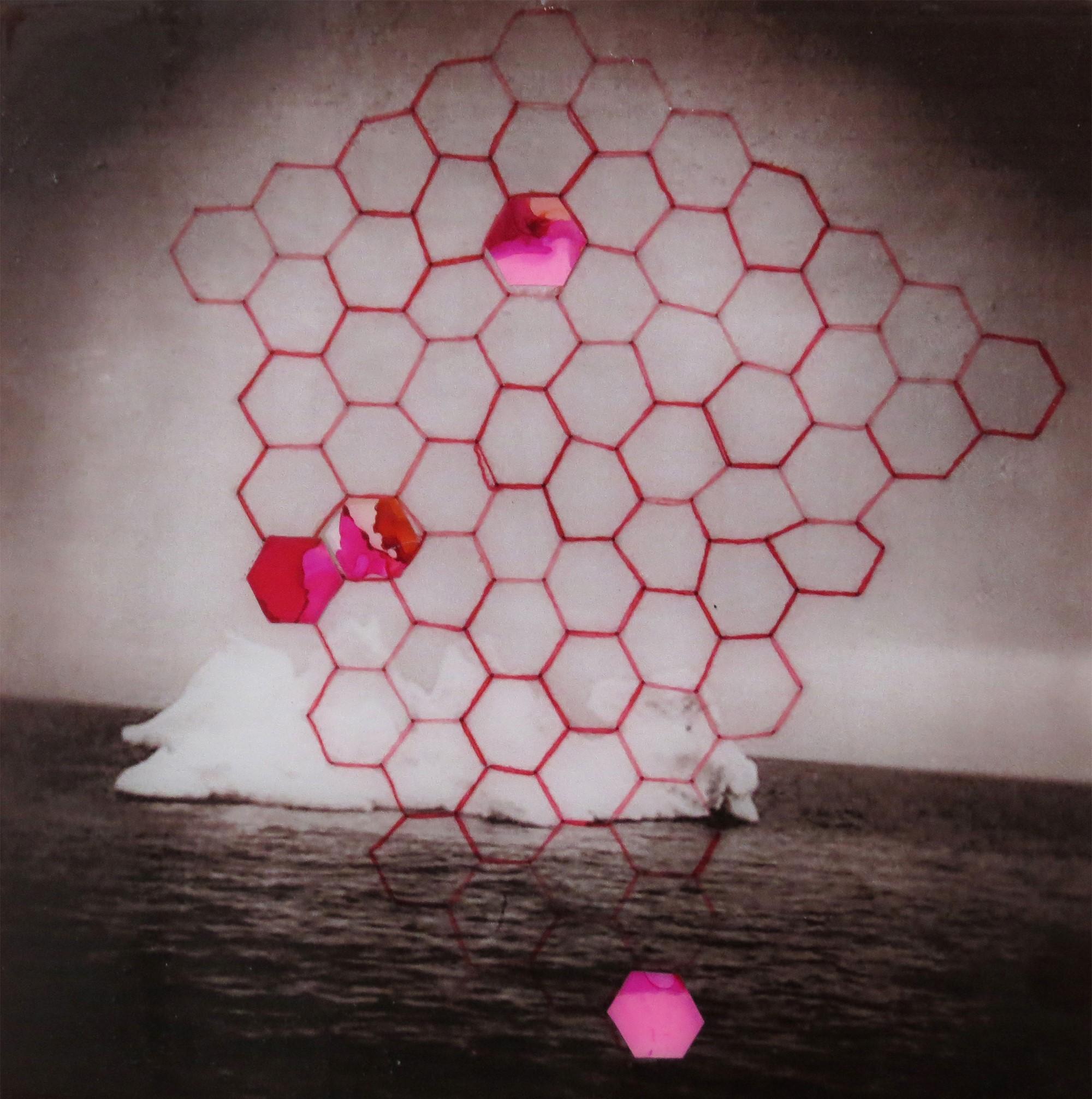 Pink Iceberg by Nicole Hyde