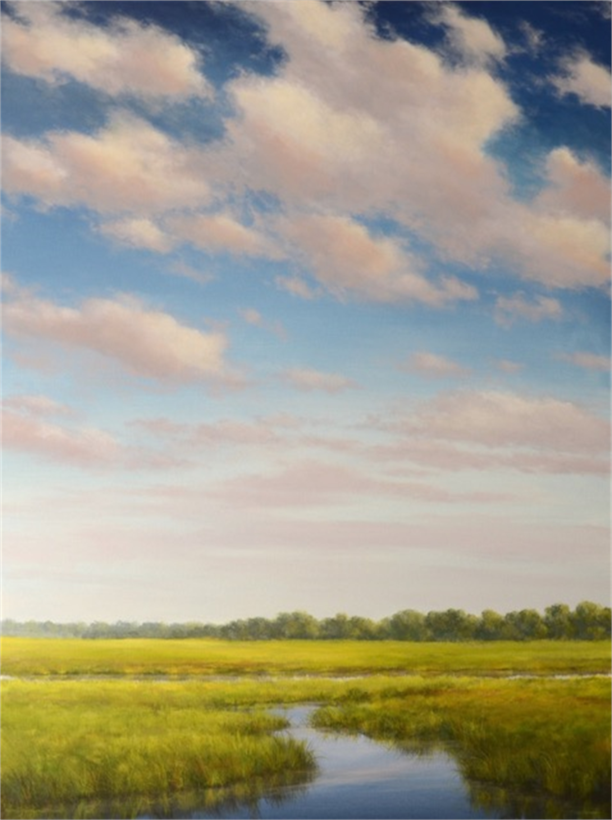 Cedar Island by David Nance