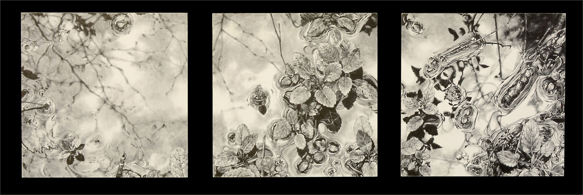 Microcosm (triptych) by Robin Cole