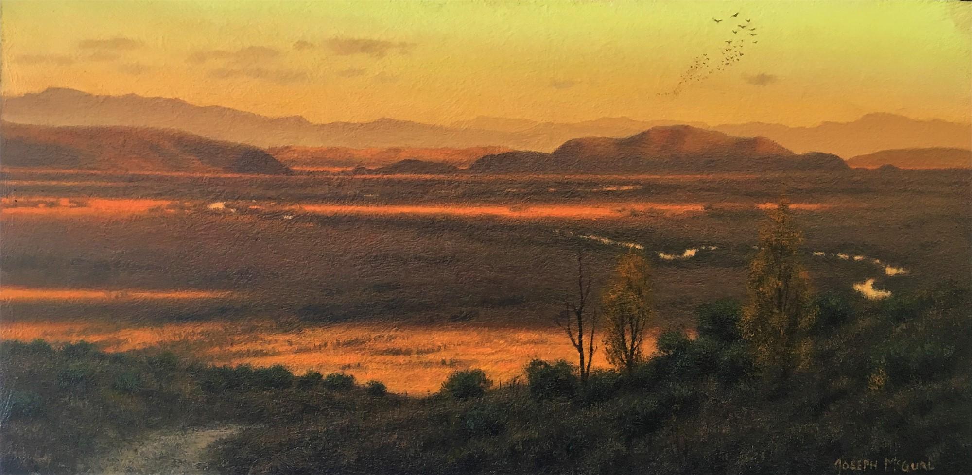 Far Away by Joseph McGurl