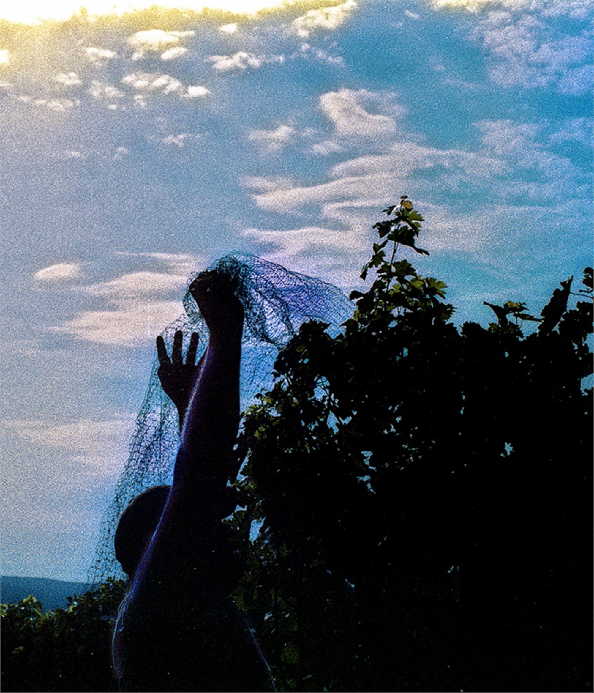 The Veil by Sam Aslanian