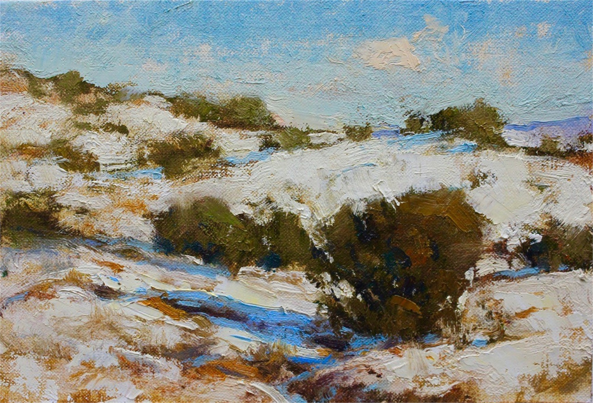 Pinon in Snow by Michael J Lynch