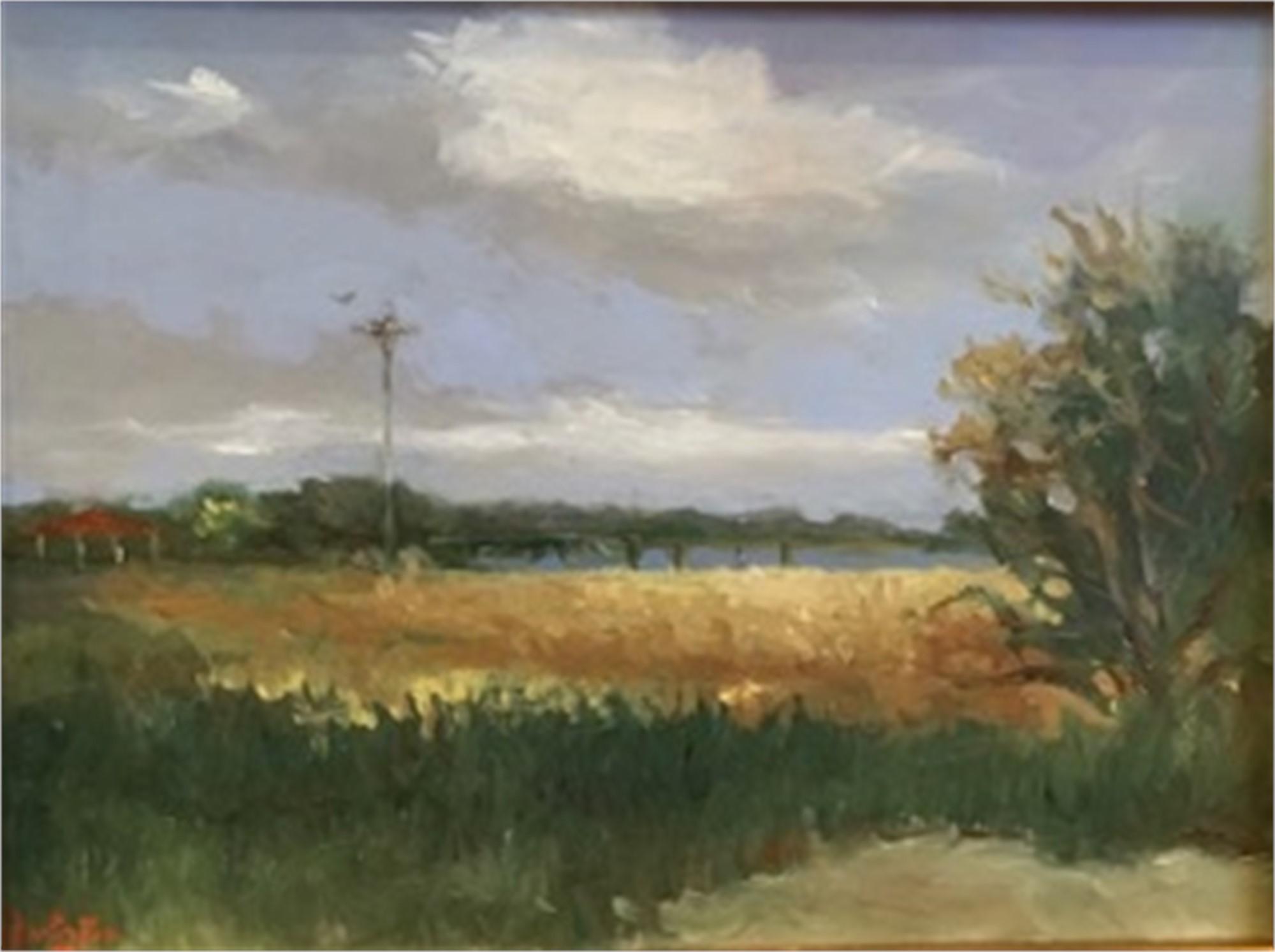 The Osprey Nest, Station #9 by Jim Darlington