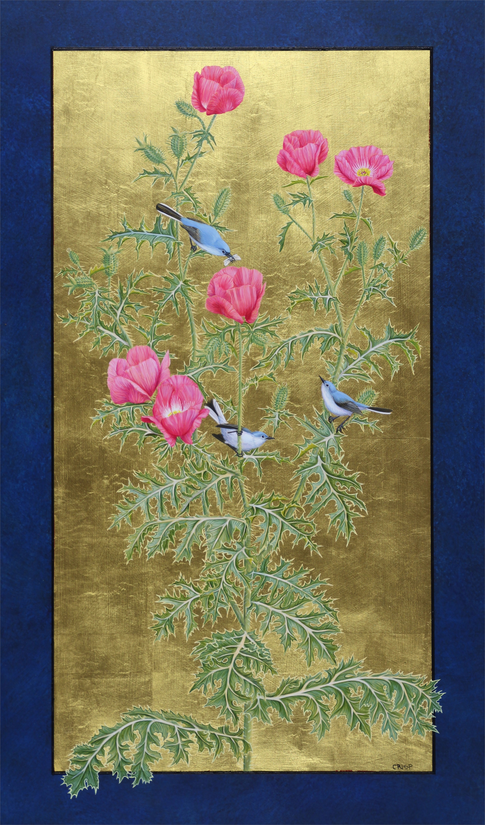 Rose Prickly Poppy and Blue-gray Gnatcatchers by Margie Crisp